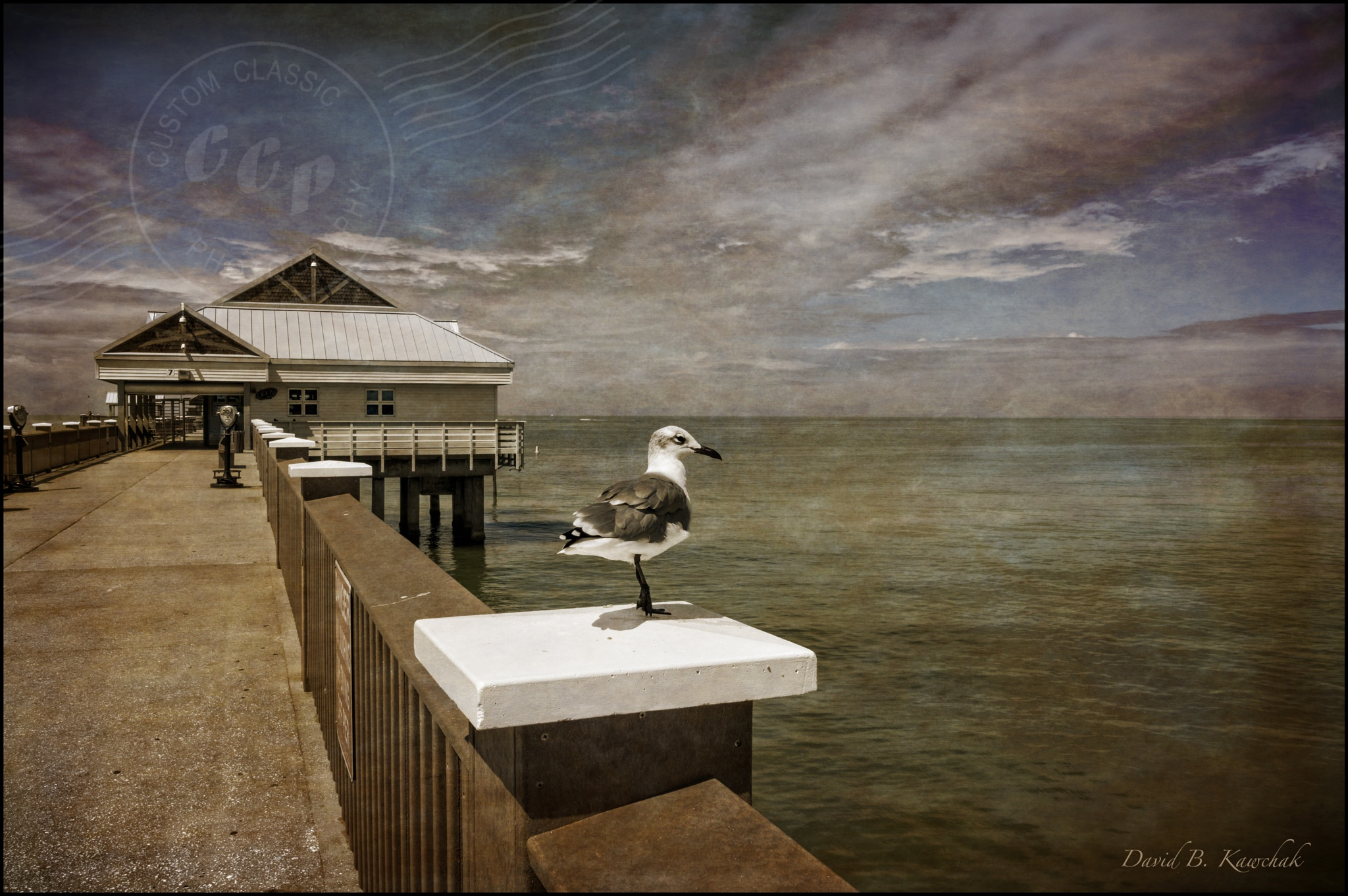 Florida Pier by davidbrucekawchak