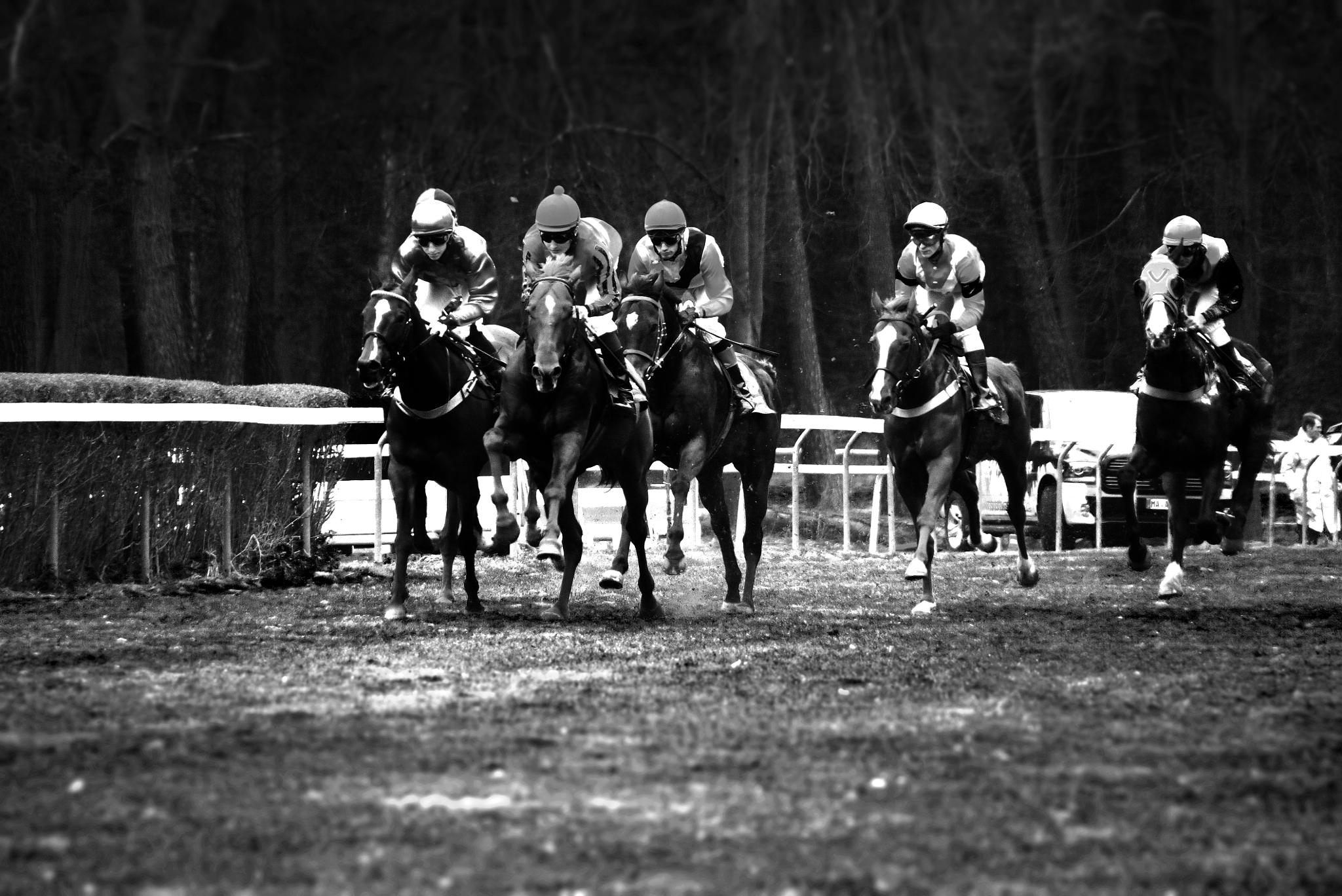 Horse Racing by AnSophia