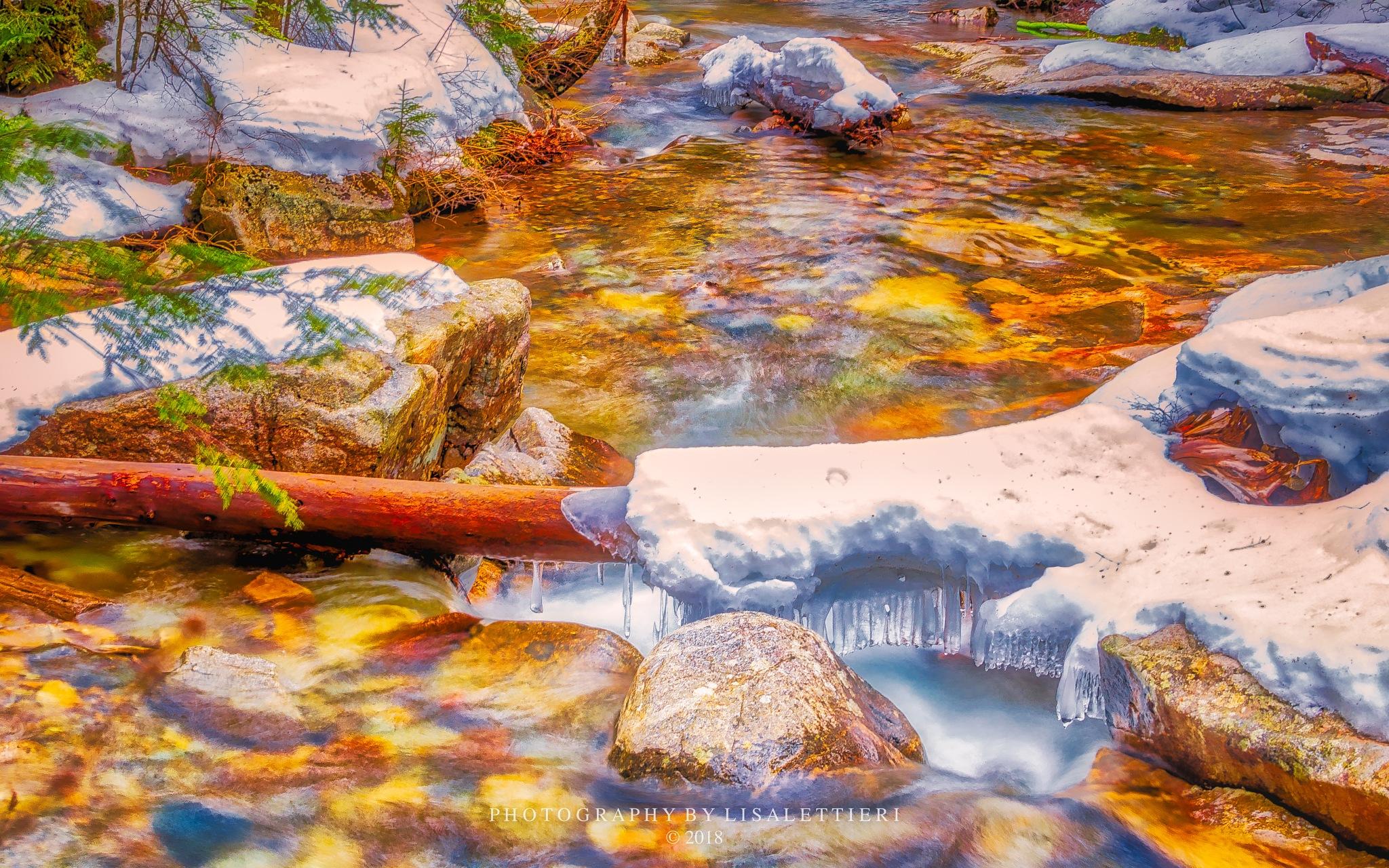 Cascade Brook II by lisalettieri5