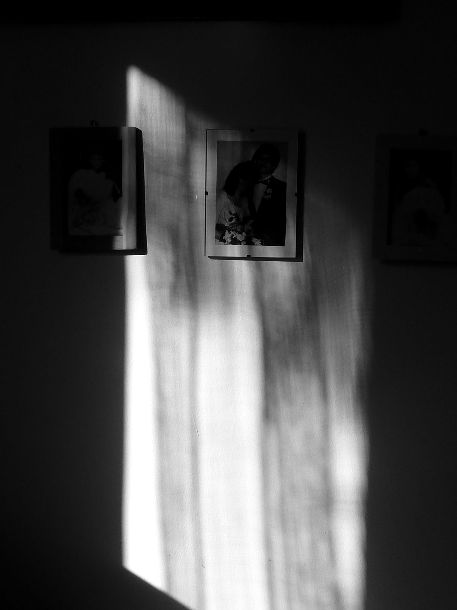 Untitled by szabo.szilvi1