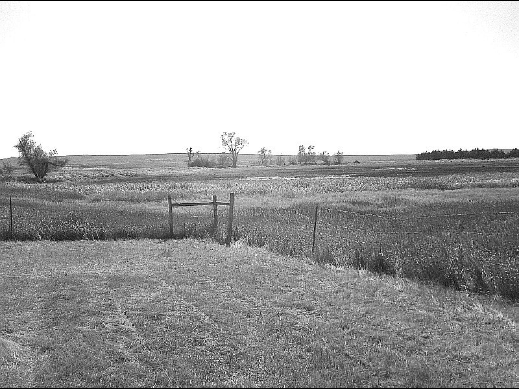 Farm land 2 by emilyann28