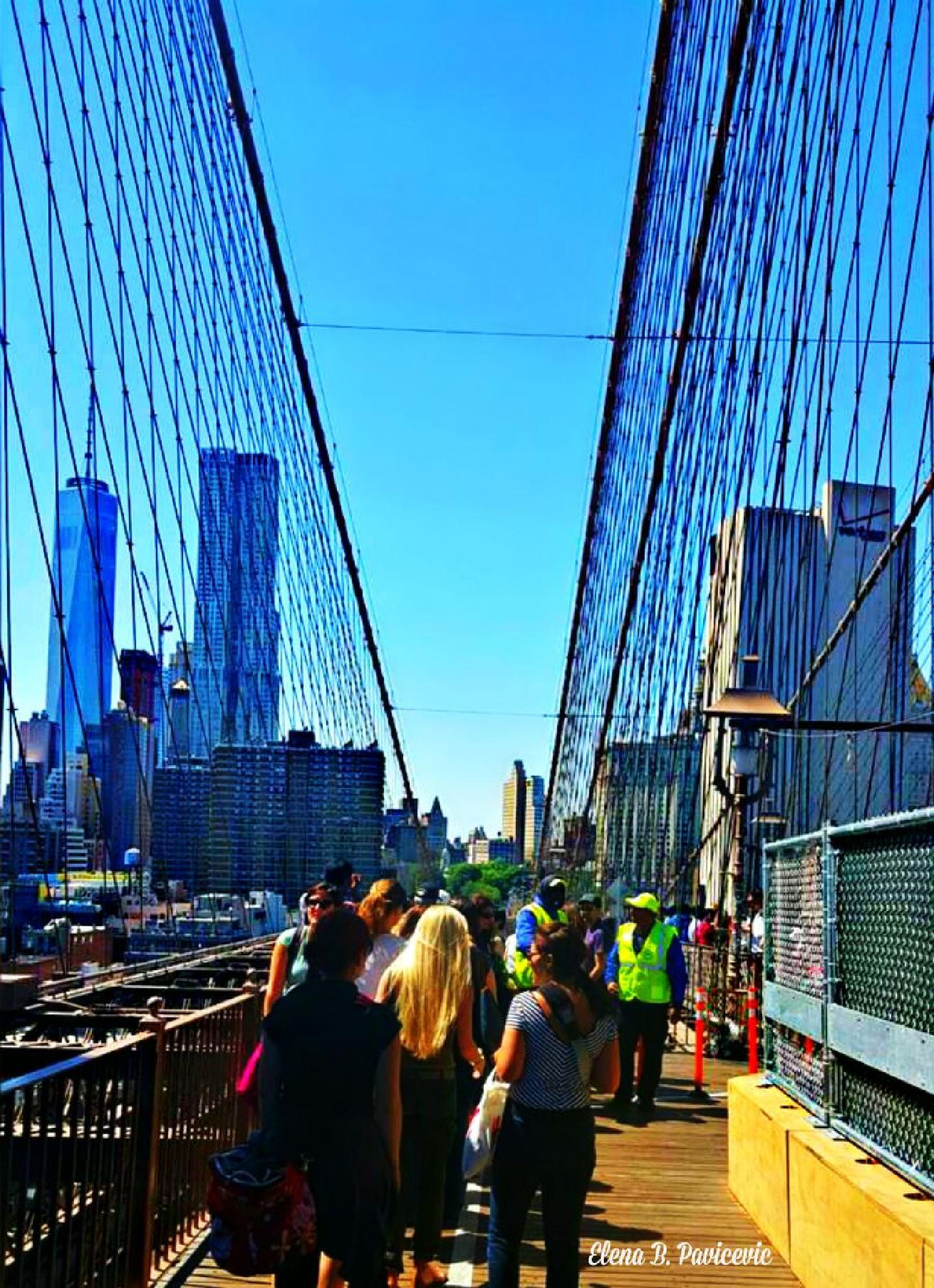 Bridge by elena.b.bueker