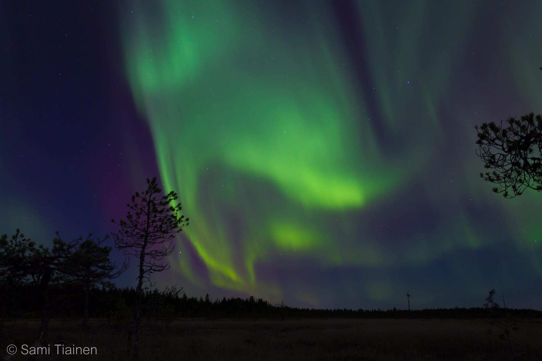 Northern lights by Sami Tiainen