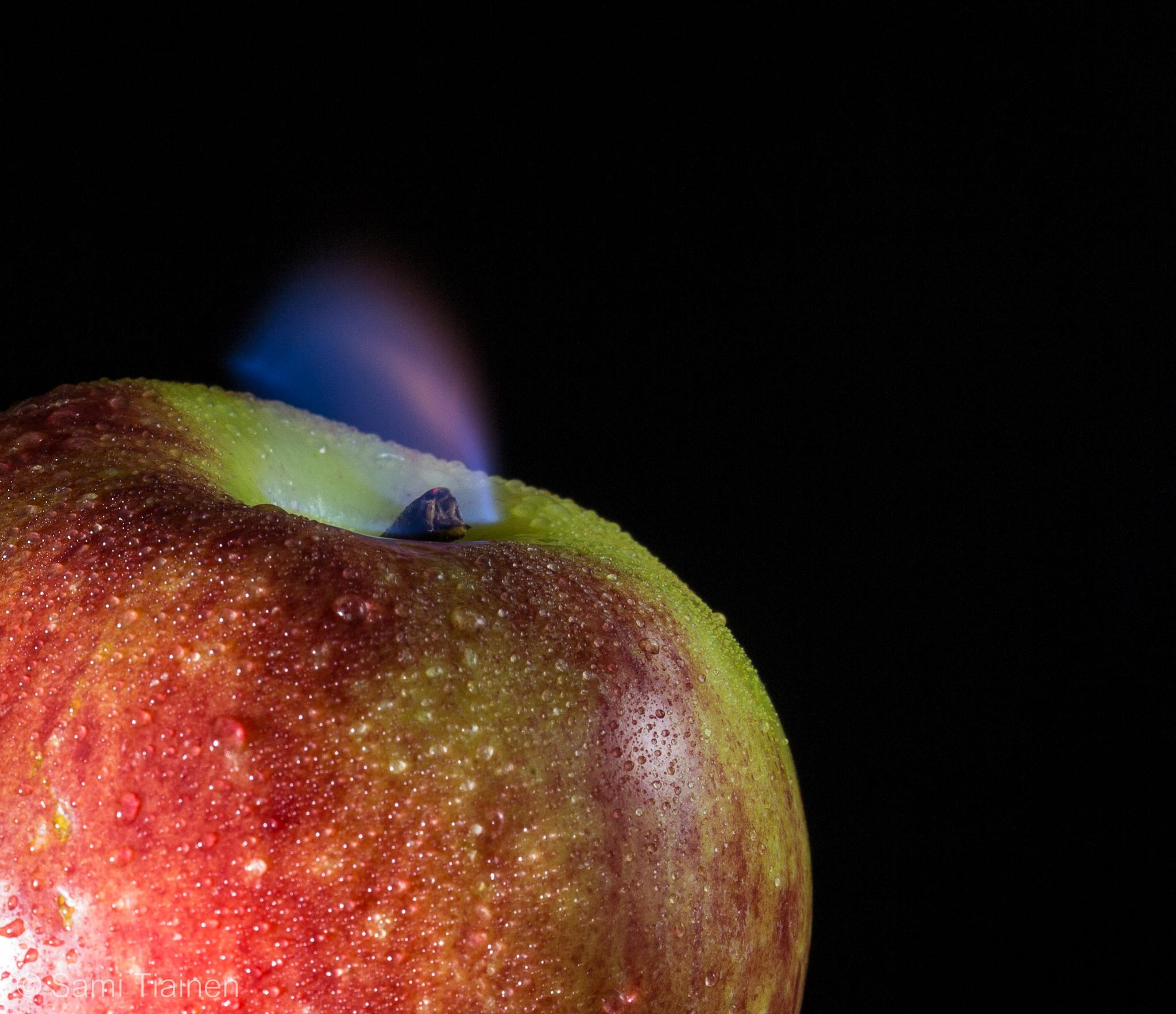 Photo in Macro #apple #fruit #low #key