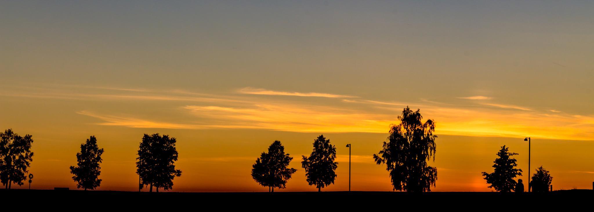 Photo in Landscape #oulu #silhouette #sunset #night #evening #summer #finland #canon #eos #700d #sami #tiainen #samitintti