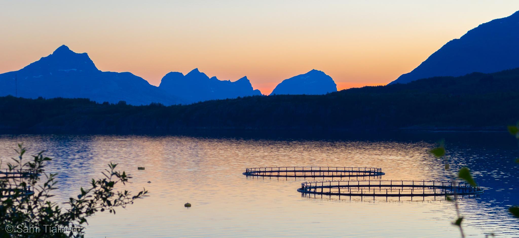 Sunset by Sami Tiainen