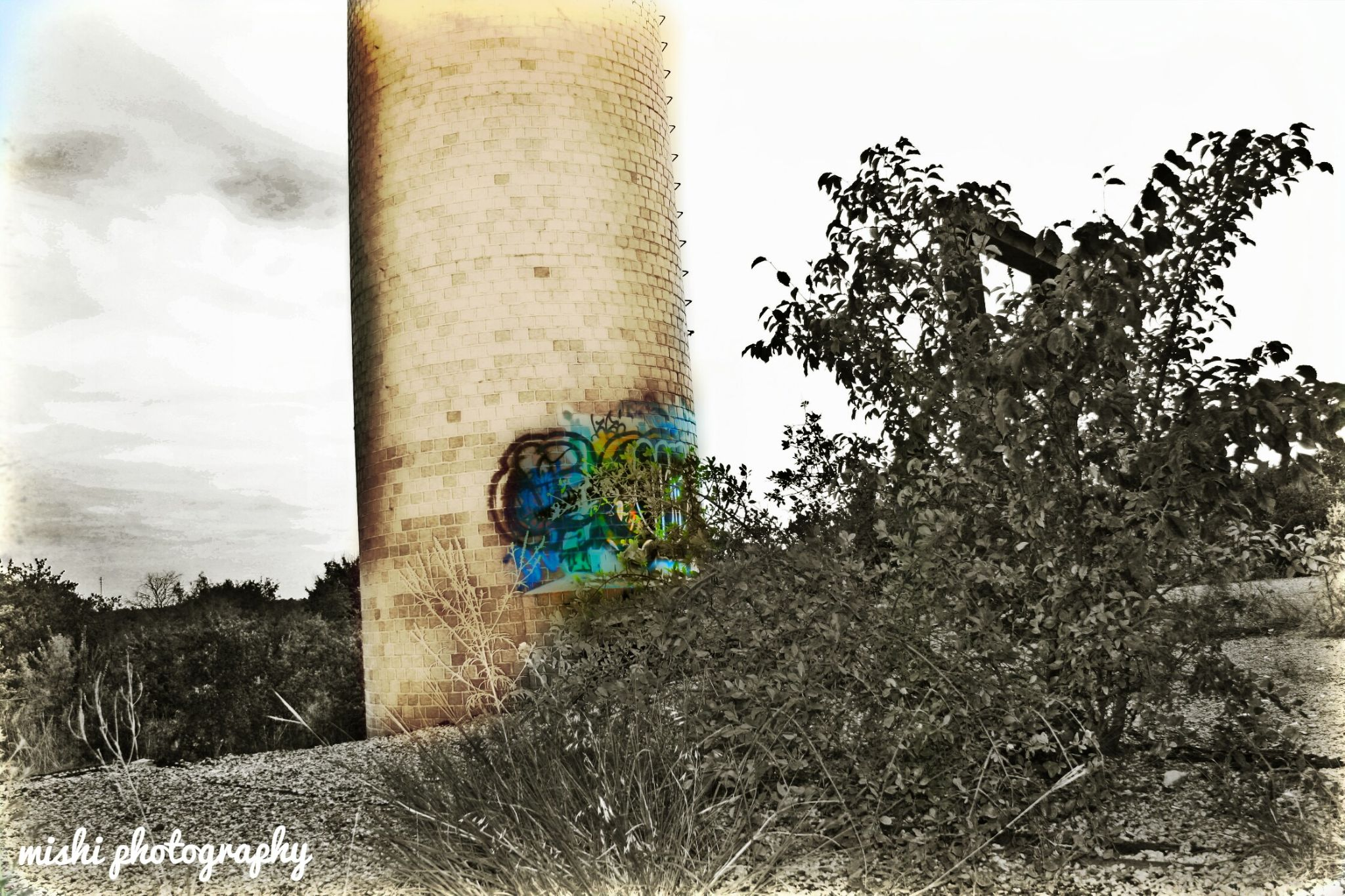 abandoned fort Worth tx incinerator   by mishi
