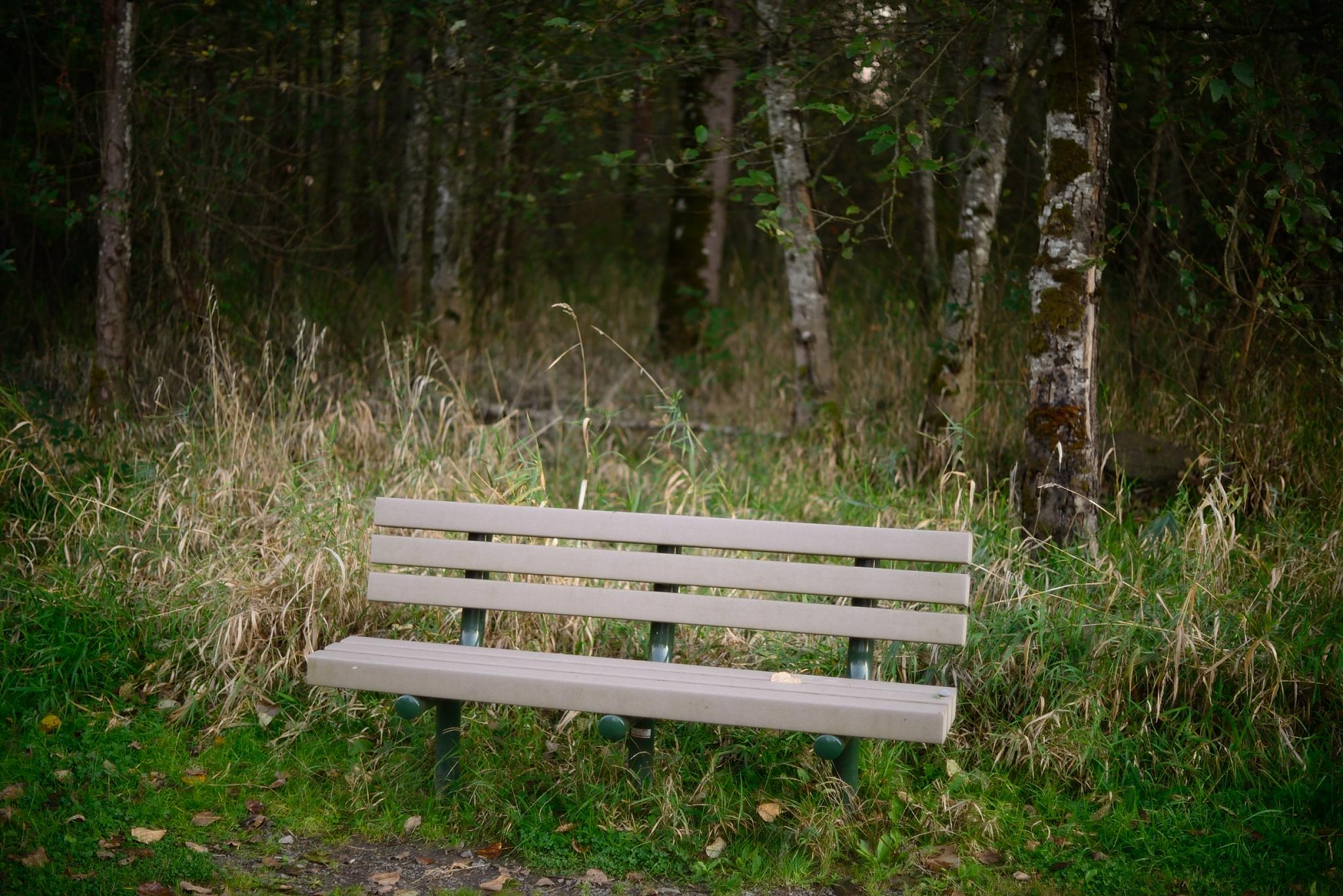 the Bench by Leback