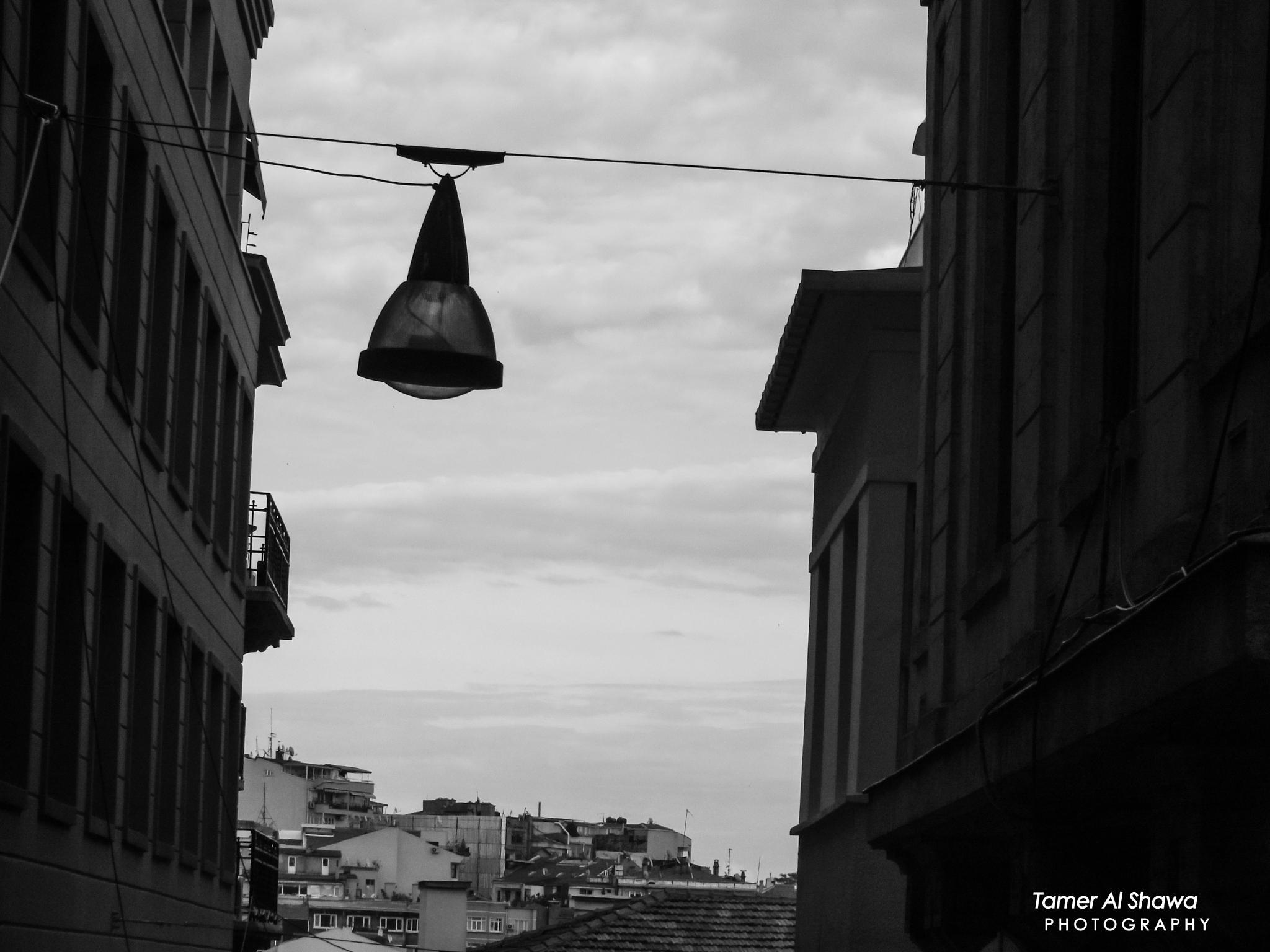 Untitled by Tamer Shawa