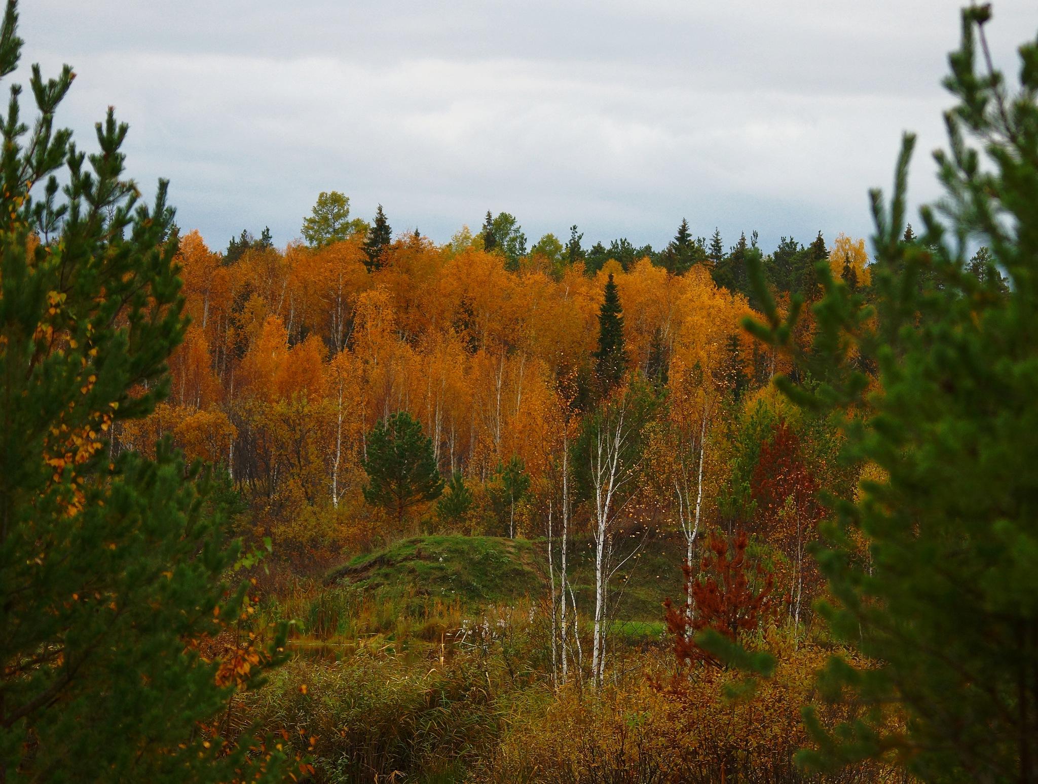 Evening October by sergey.parfeniuk