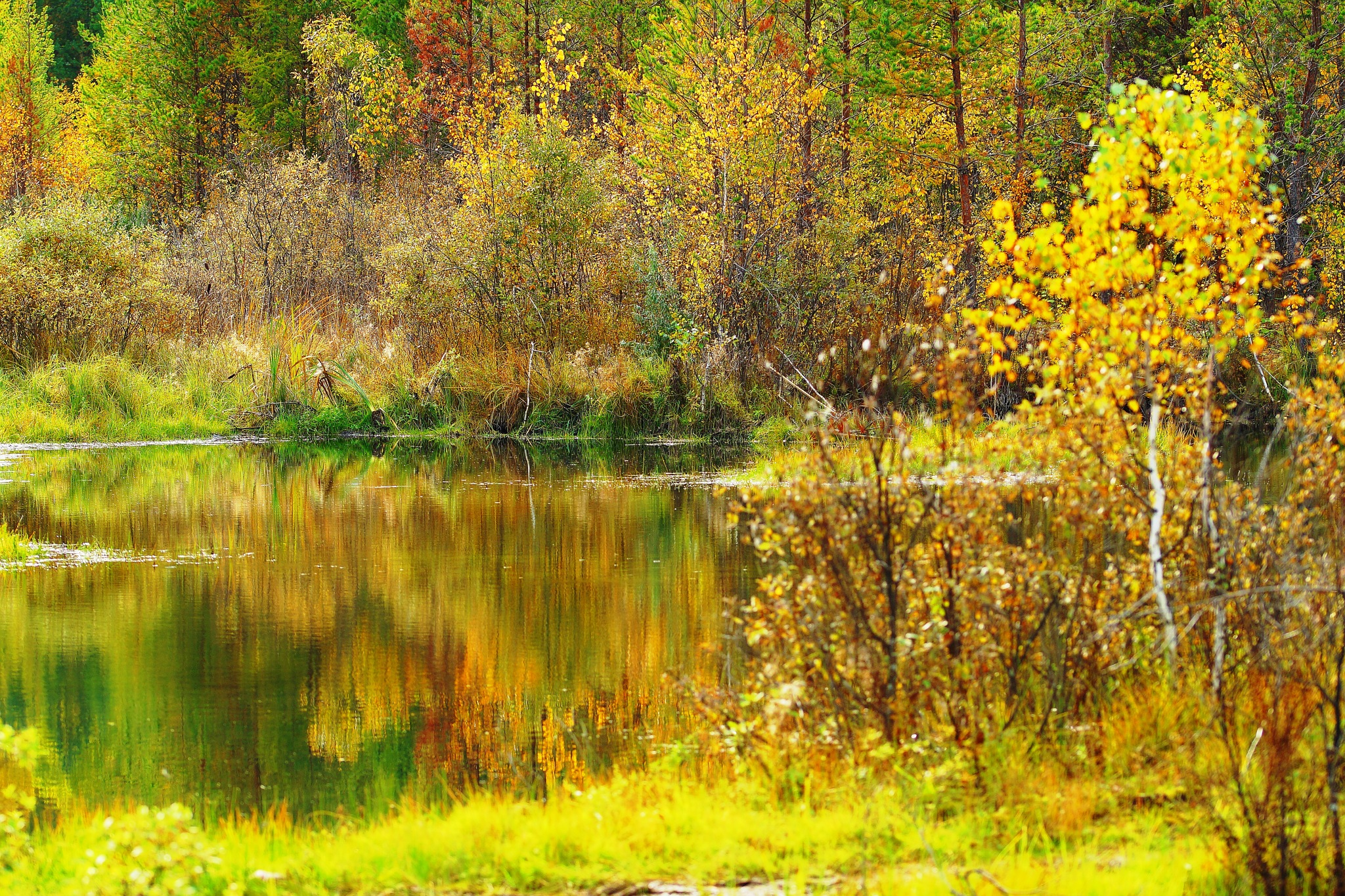 Wonderful Season by sergey.parfeniuk