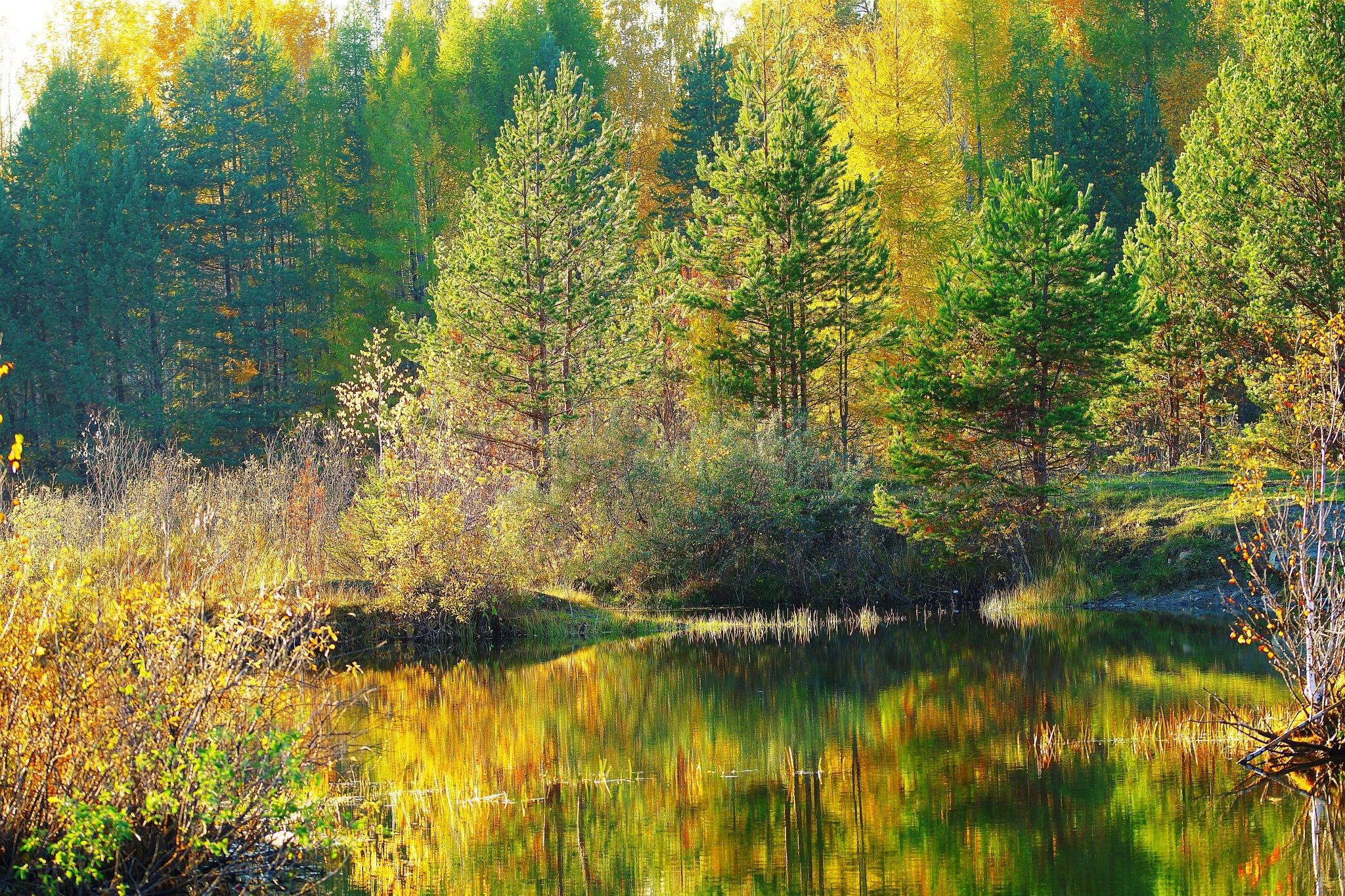 October by sergey.parfeniuk