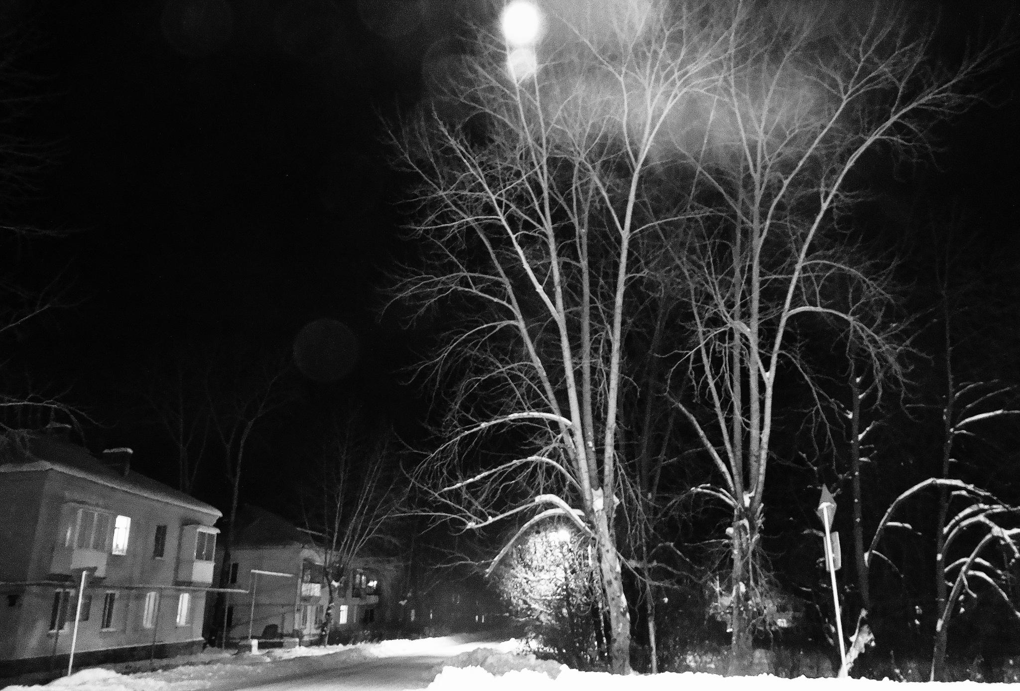 Evening  by sergey.parfeniuk