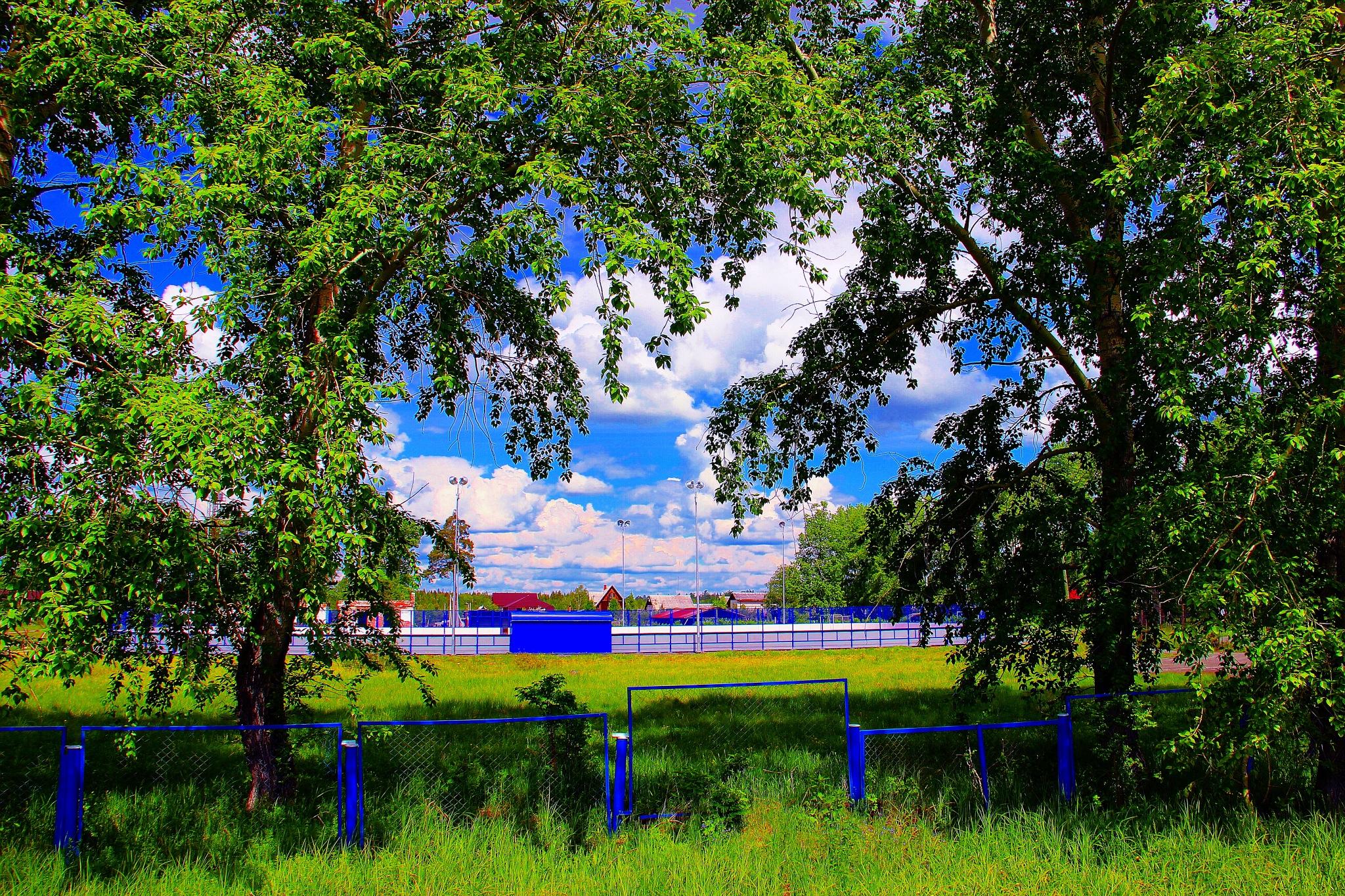 Summer by sergey.parfeniuk
