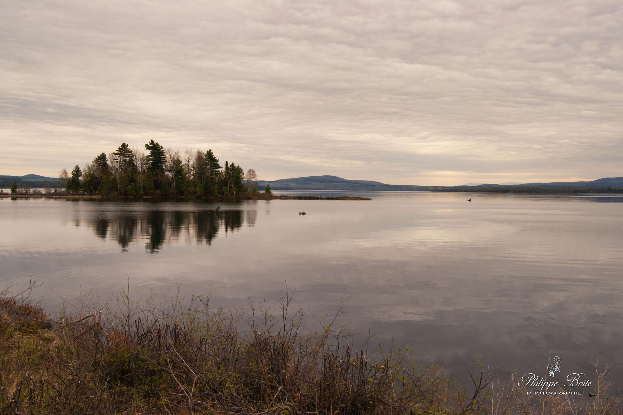 Lake Aylmer by Philippe Boite
