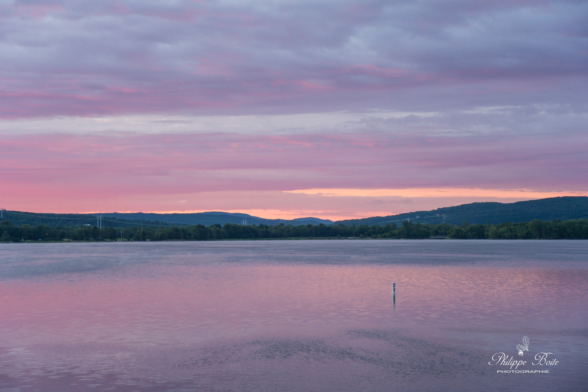 Pink dawn by Philippe Boite