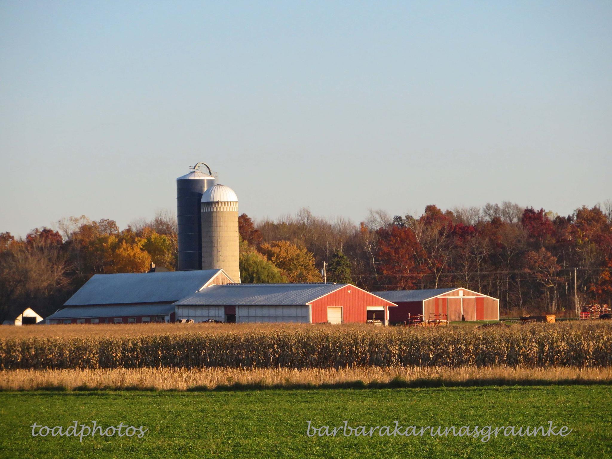 rural Wisconsin by bkgraunke