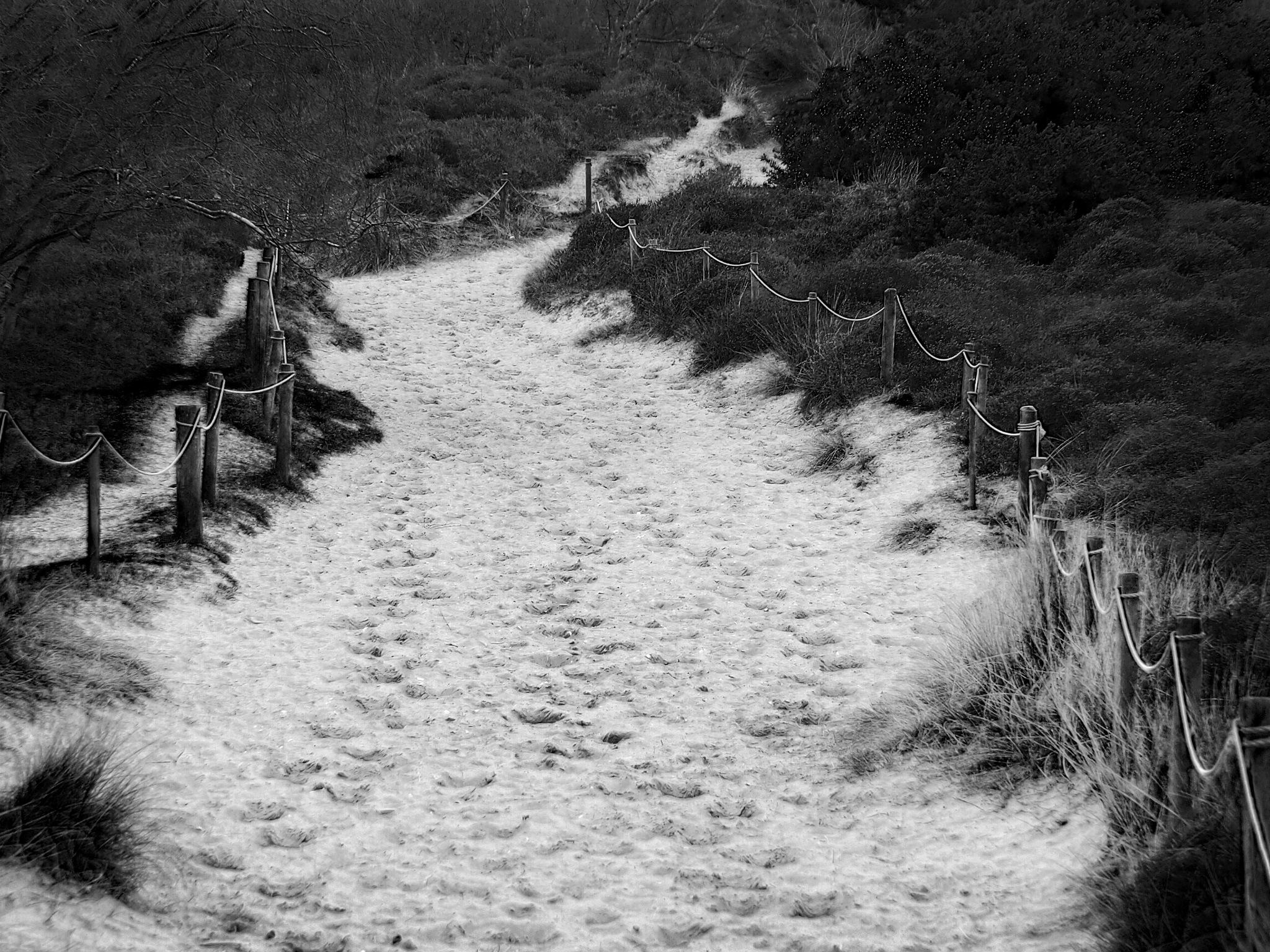 sandy path 1 by james arthur