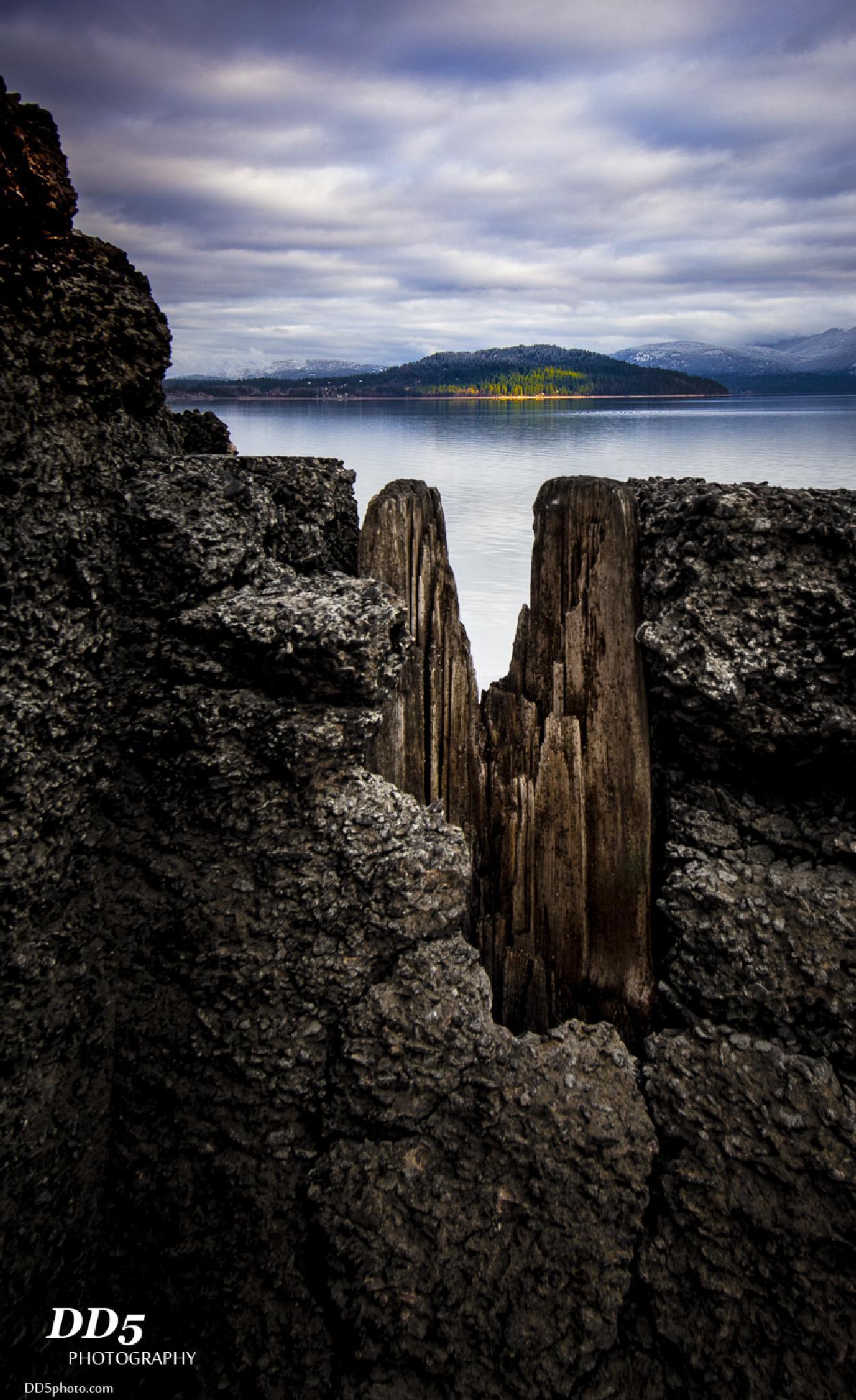 Through the ruins by DragonDriver5