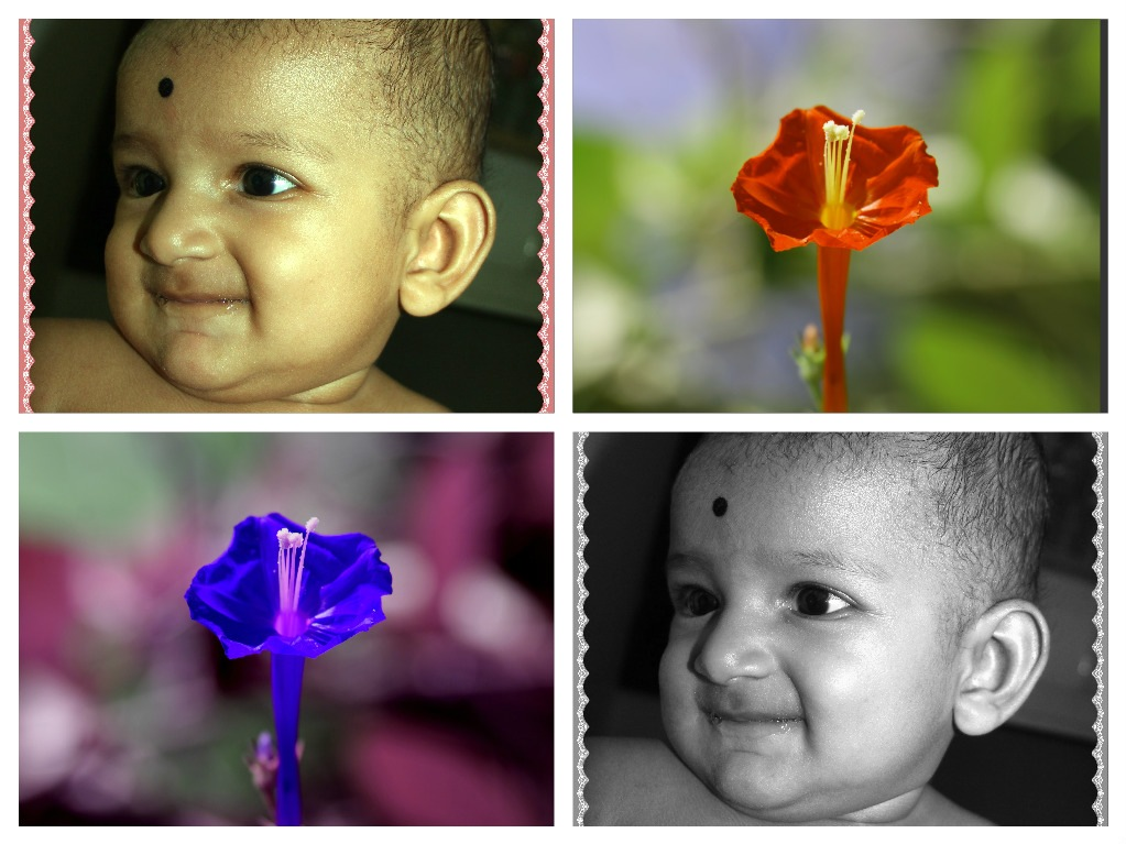 A Baby And Flowers. by A.Samathasena