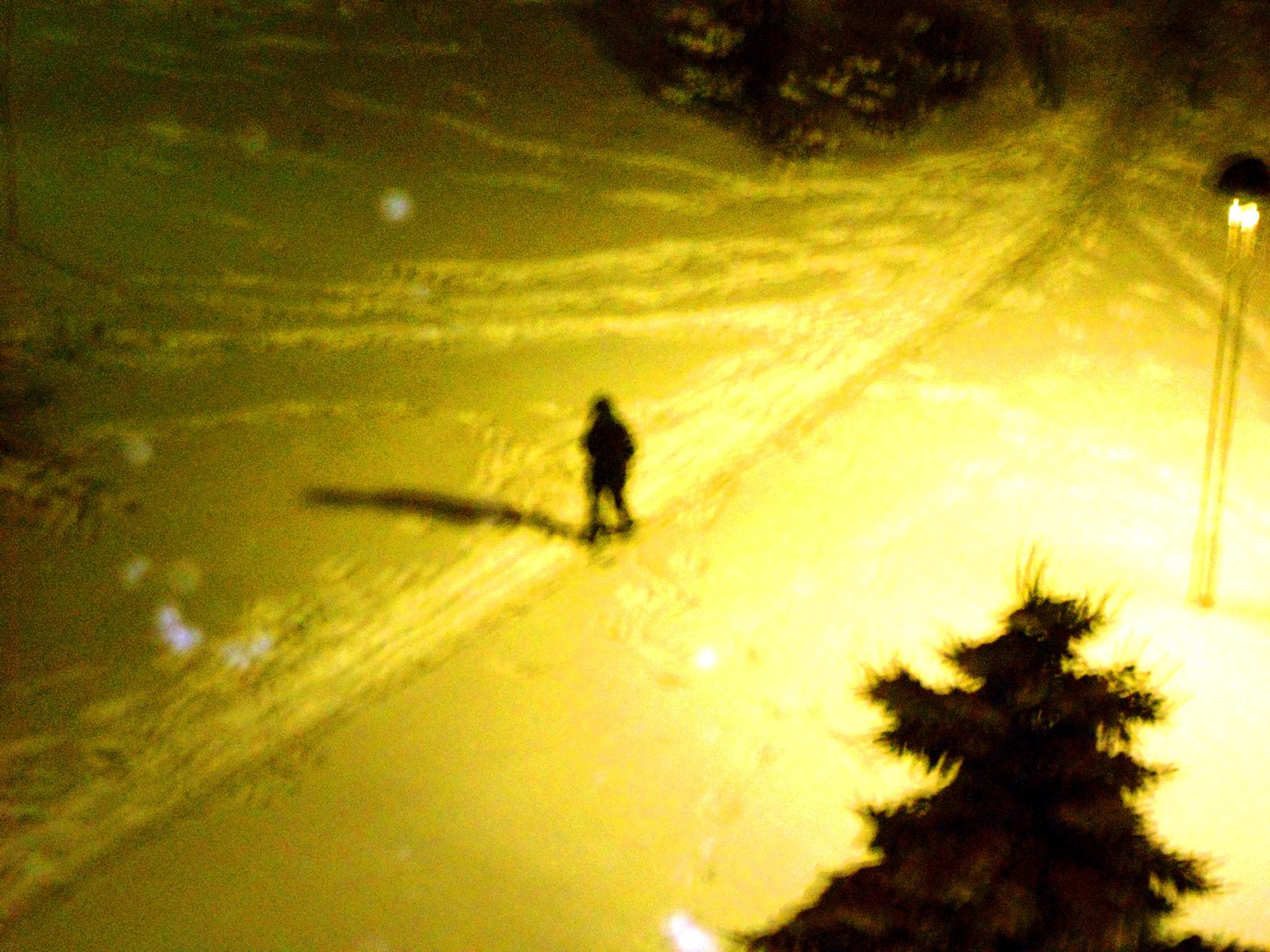 In the winter night by biljanapetrovic1048