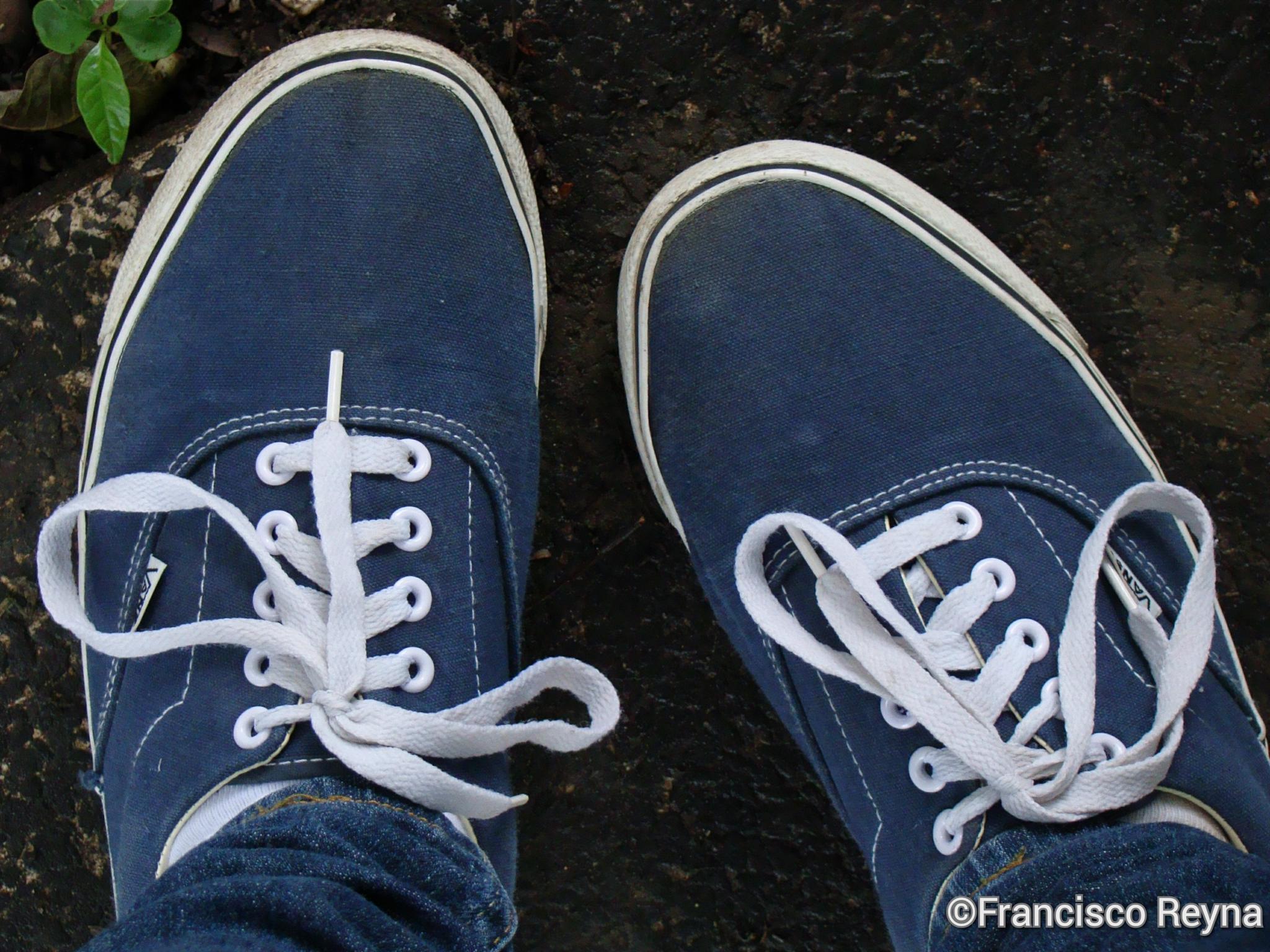 Blue Feet! by Francisco Reyna