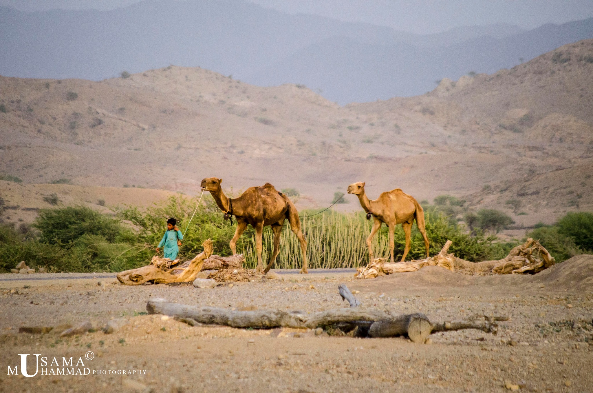 Natives of Balochistan by usama.muhammad.980