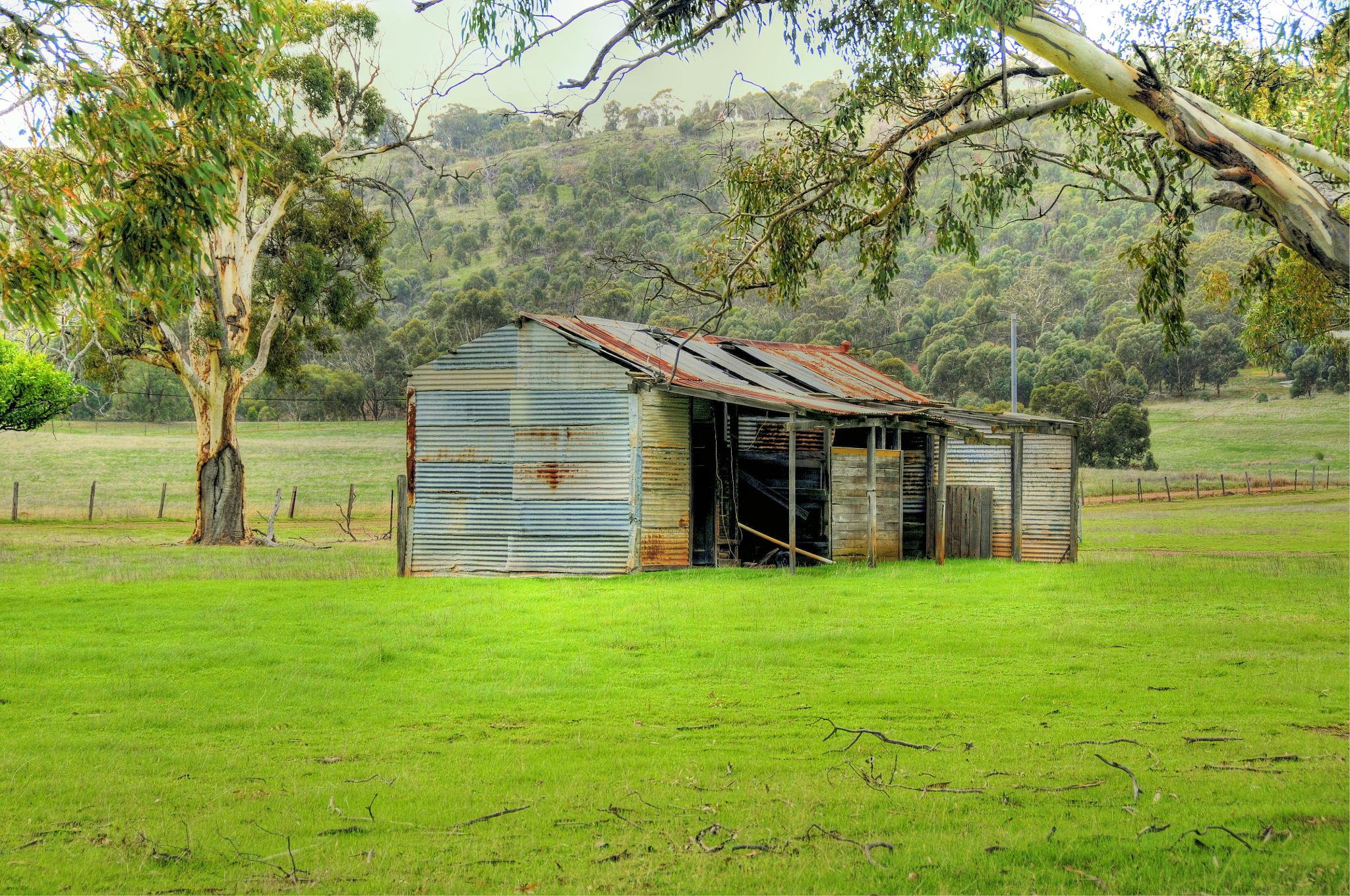 Old Shack by Dave359WA