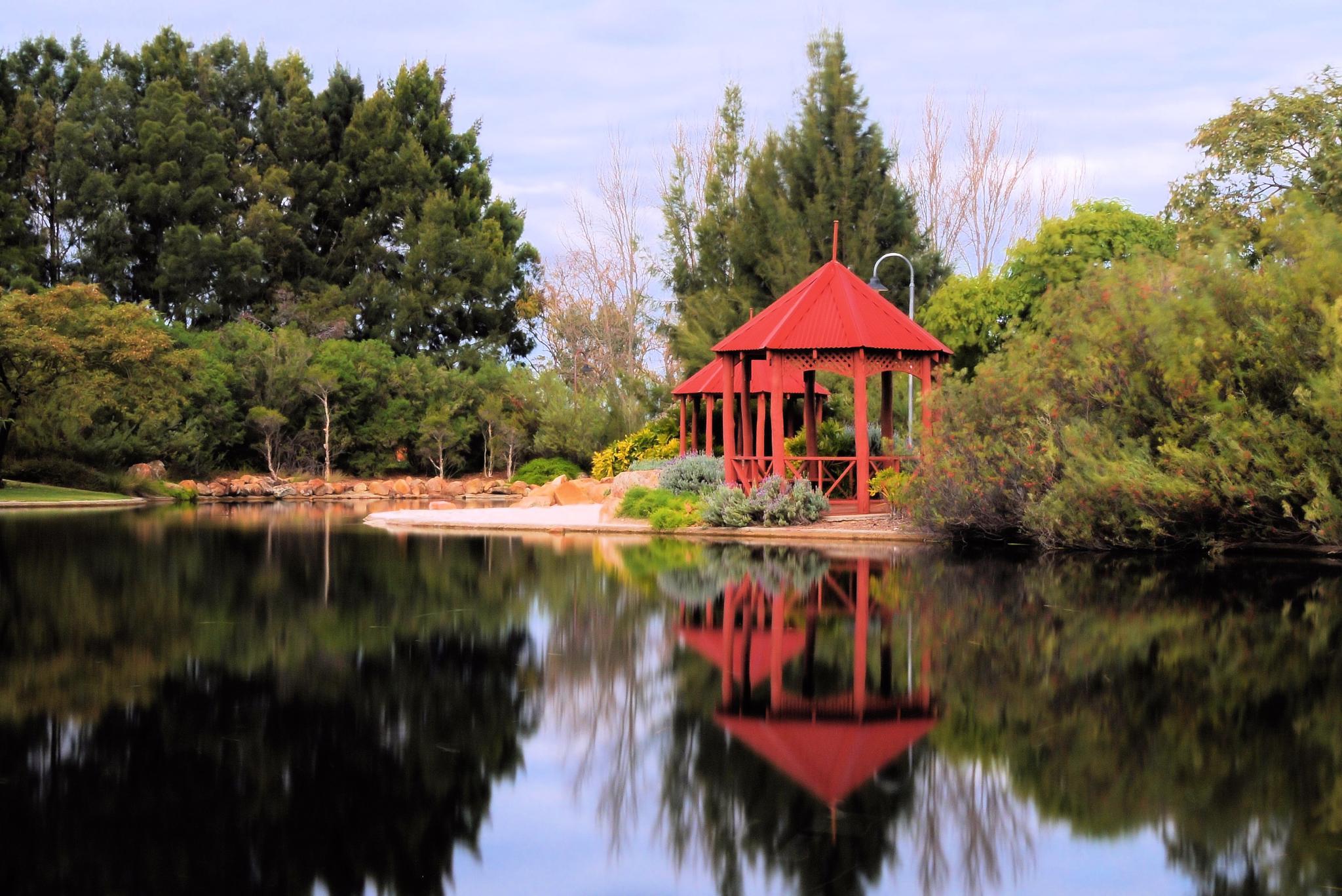 Photo in Random #reflections #lake #park #western australia