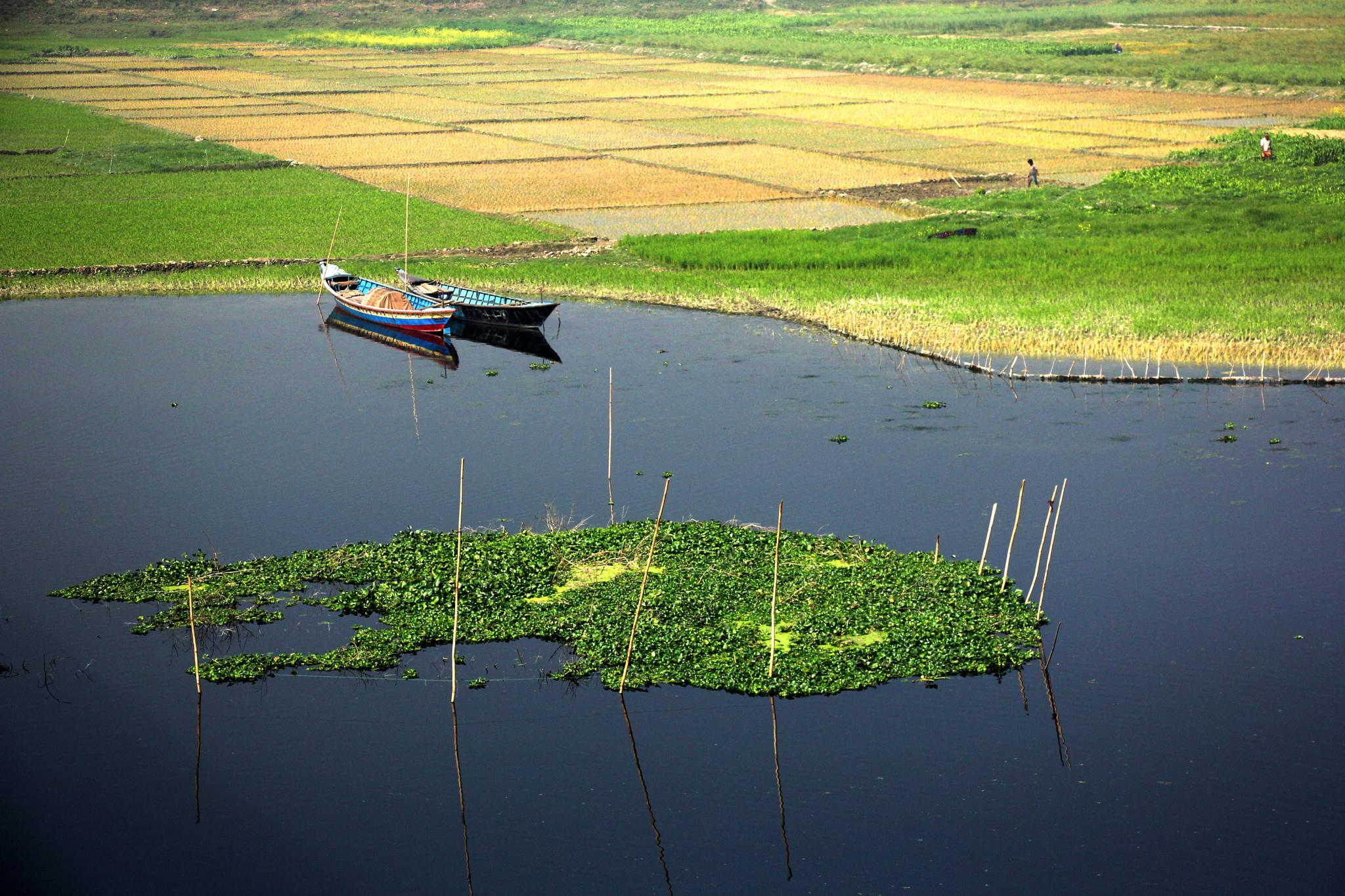 Bangladesh by sabina.akter.10