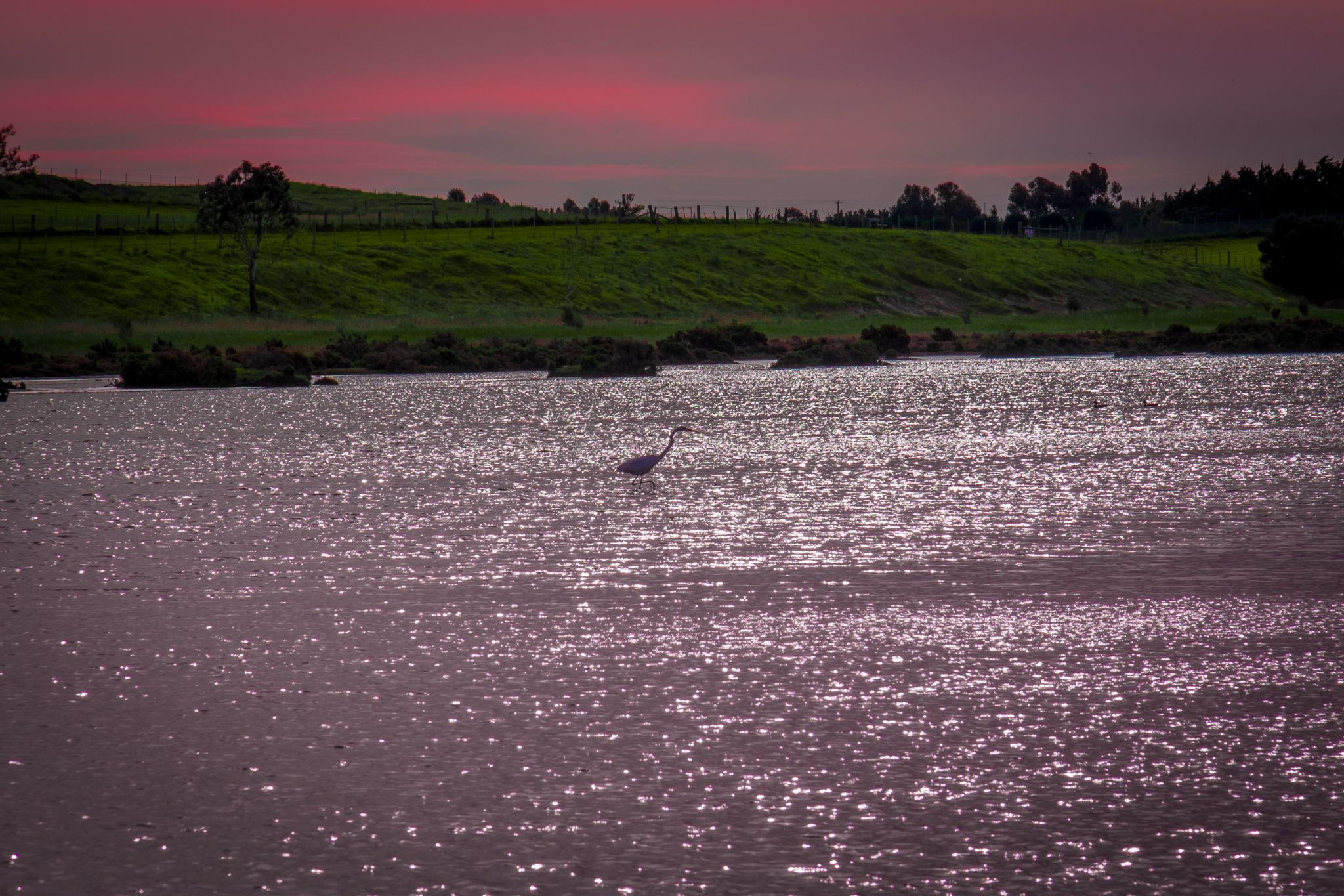 Majestic Sunset by MaddisonTrainor