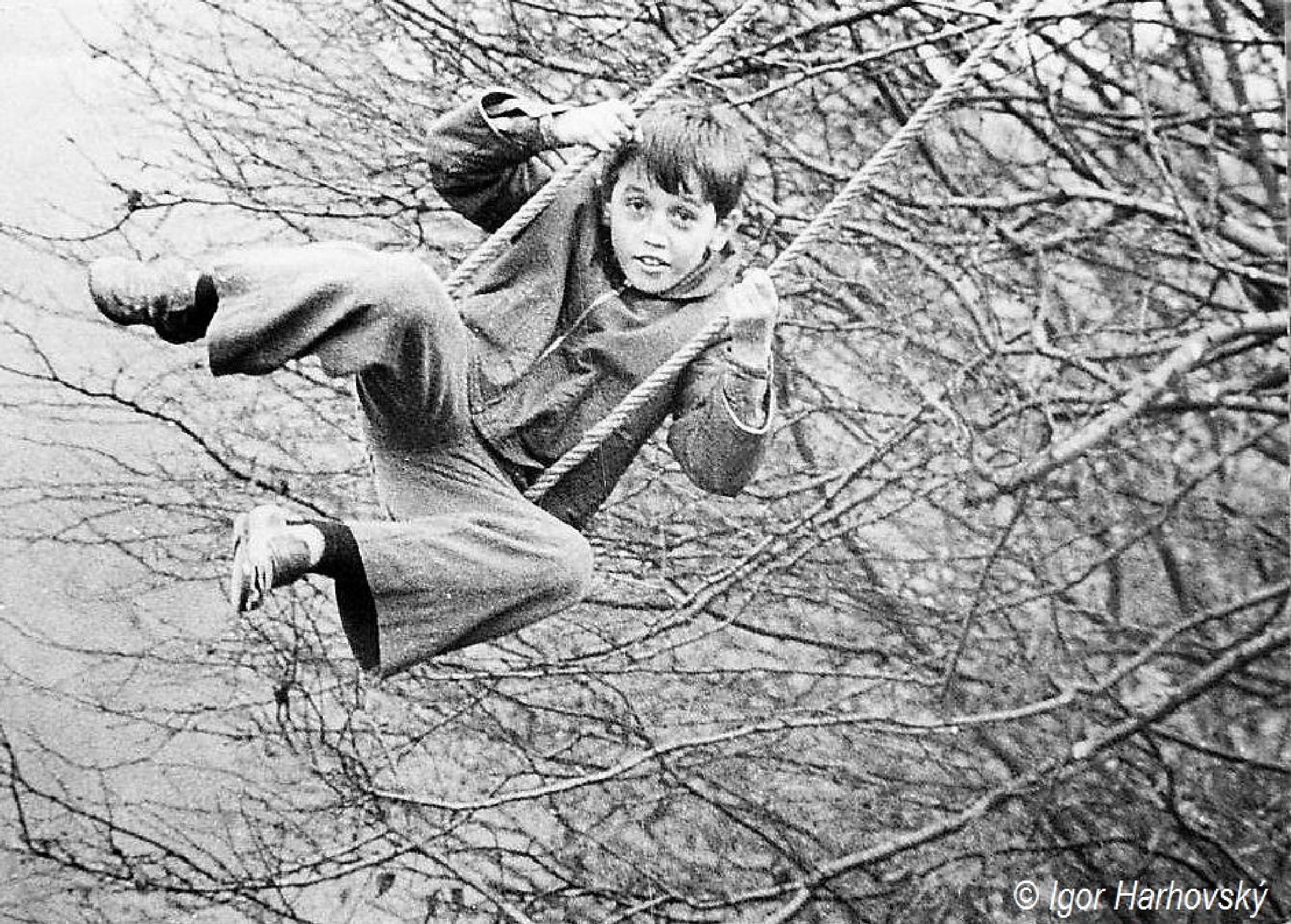môj brat v roku 1977 by igor.harhovsky