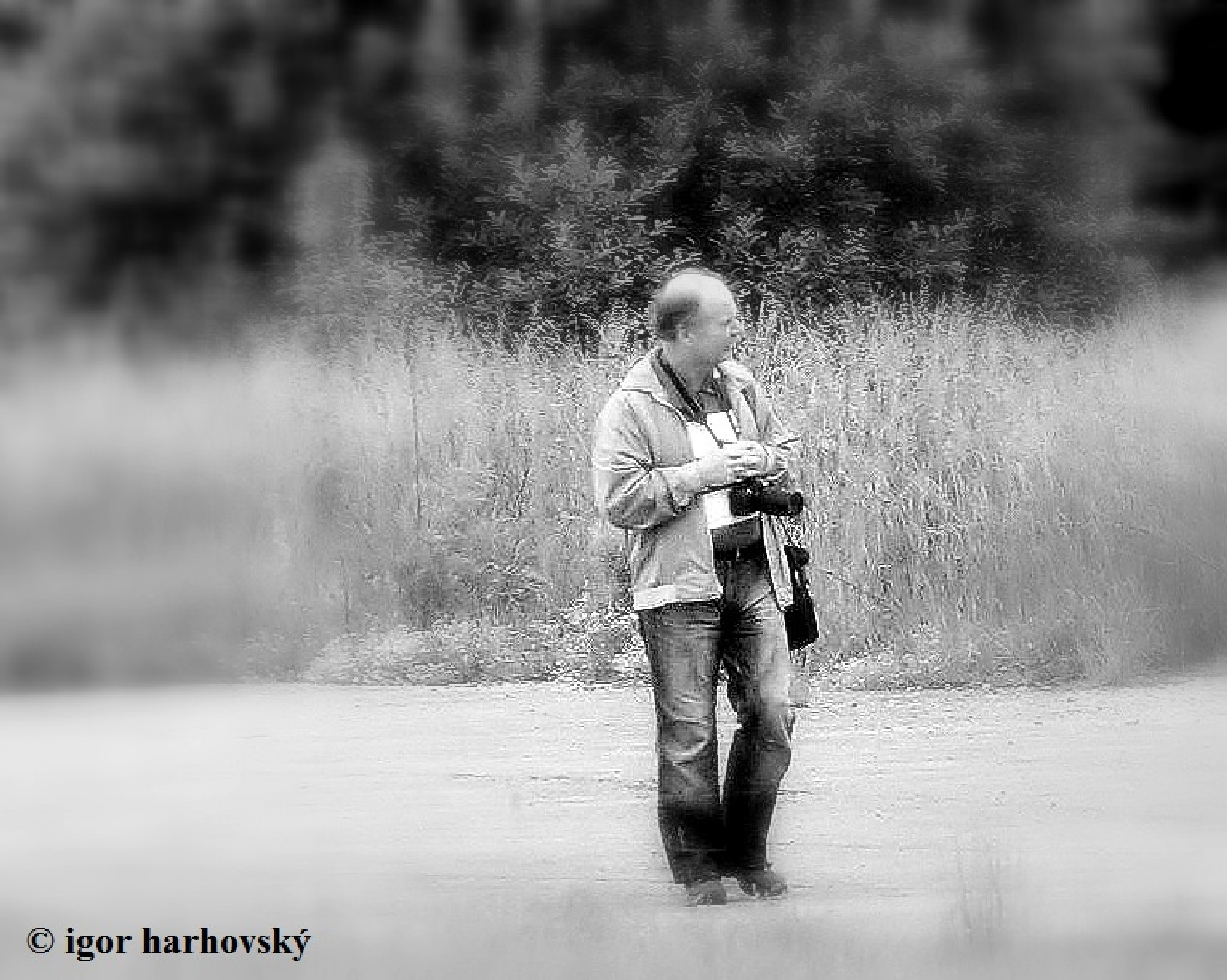 Untitled by igor.harhovsky