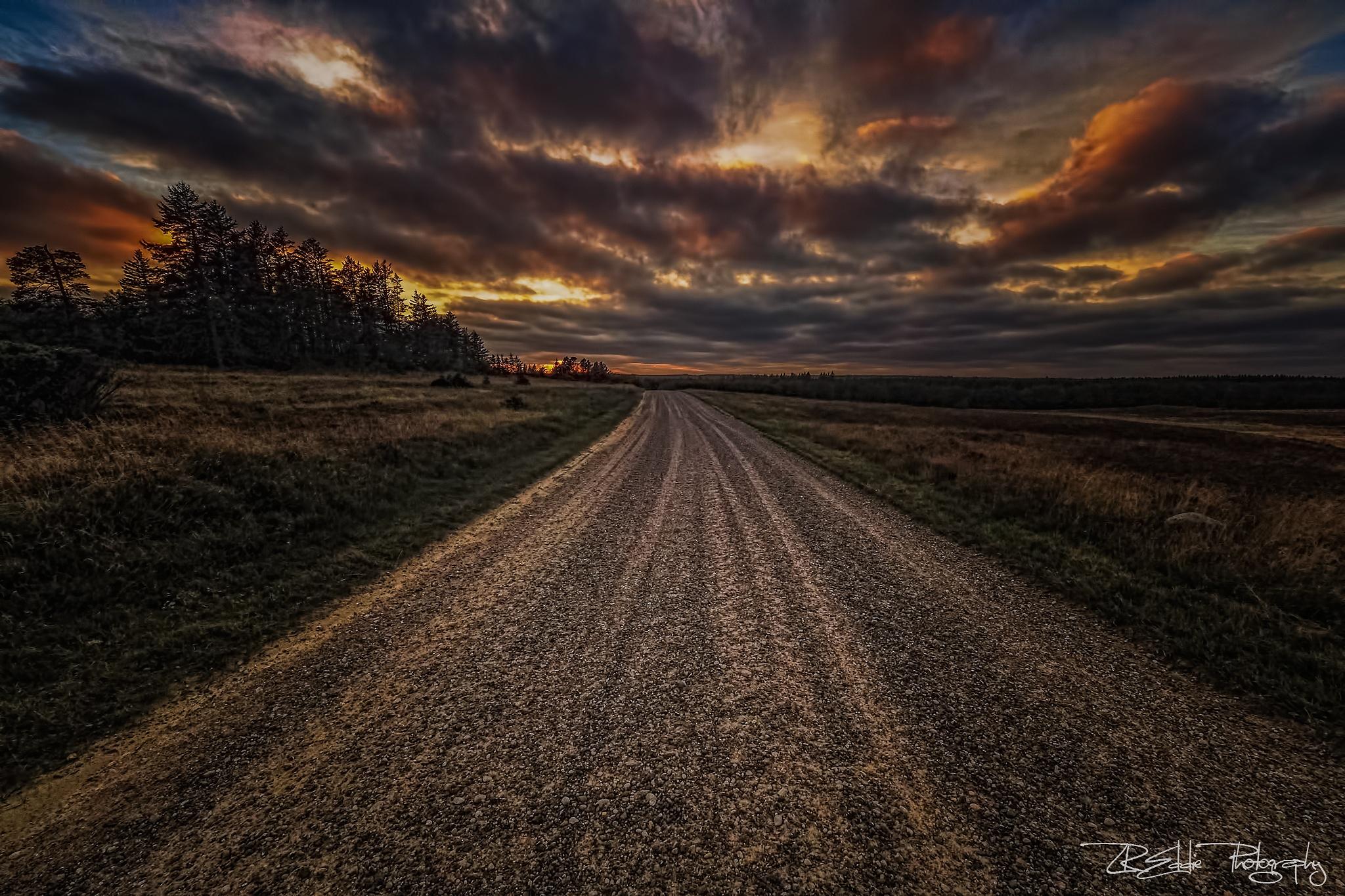 Long Way Home by Edgar Hempen Pictures