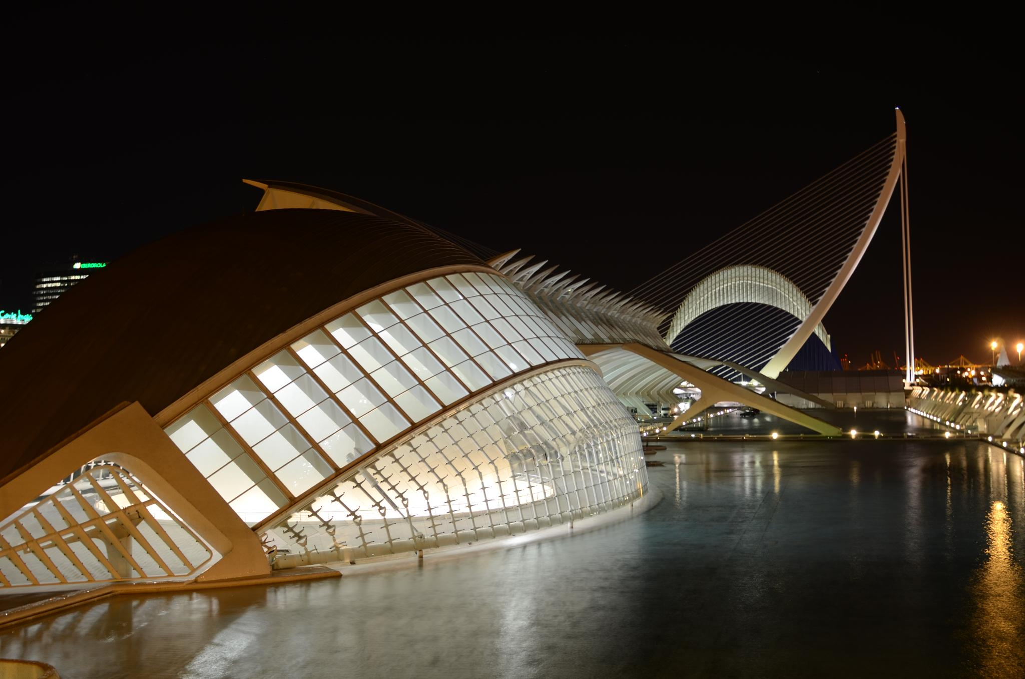 City of Arts and Sciences by ClaudioBezerra