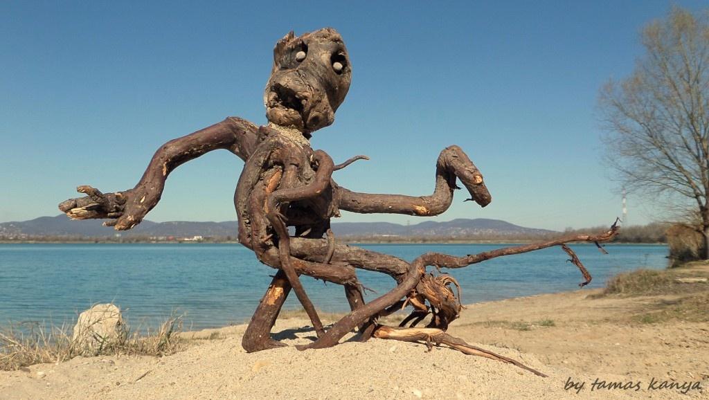 Driftwood art from Hungary by tamas kanya by Tamas Kanya