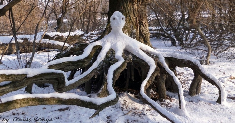 Snow art from Hungary by tamas kanya by Tamas Kanya