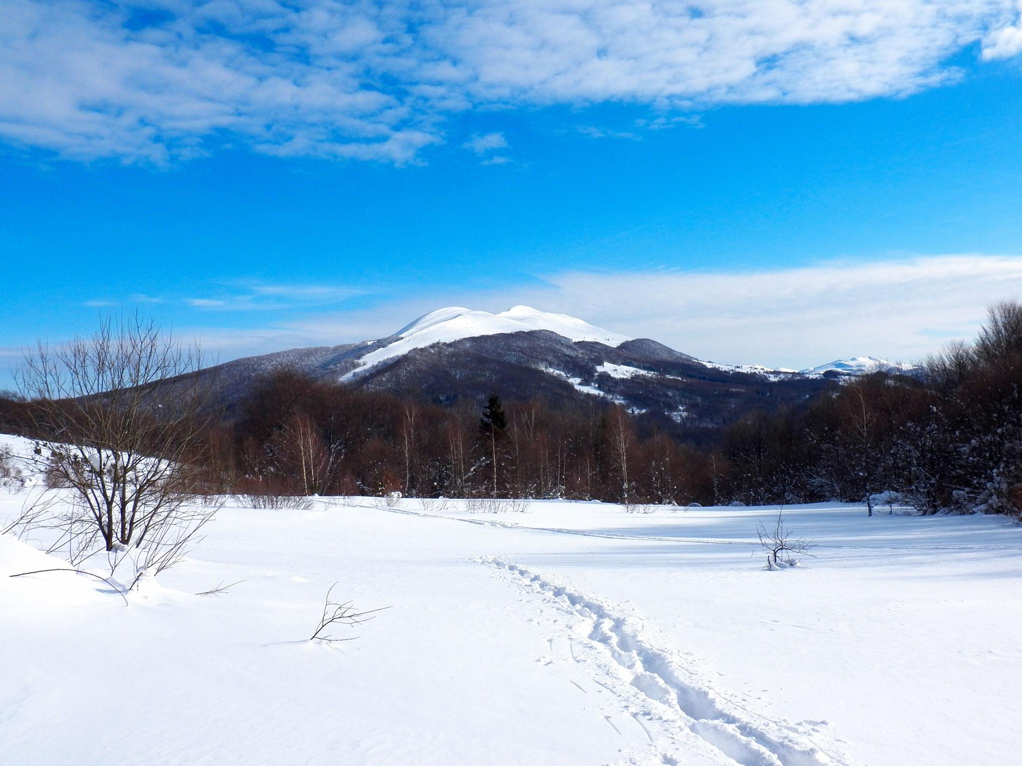 winter in mountains (mountains Bieszczady) by Stanislaw Bomba