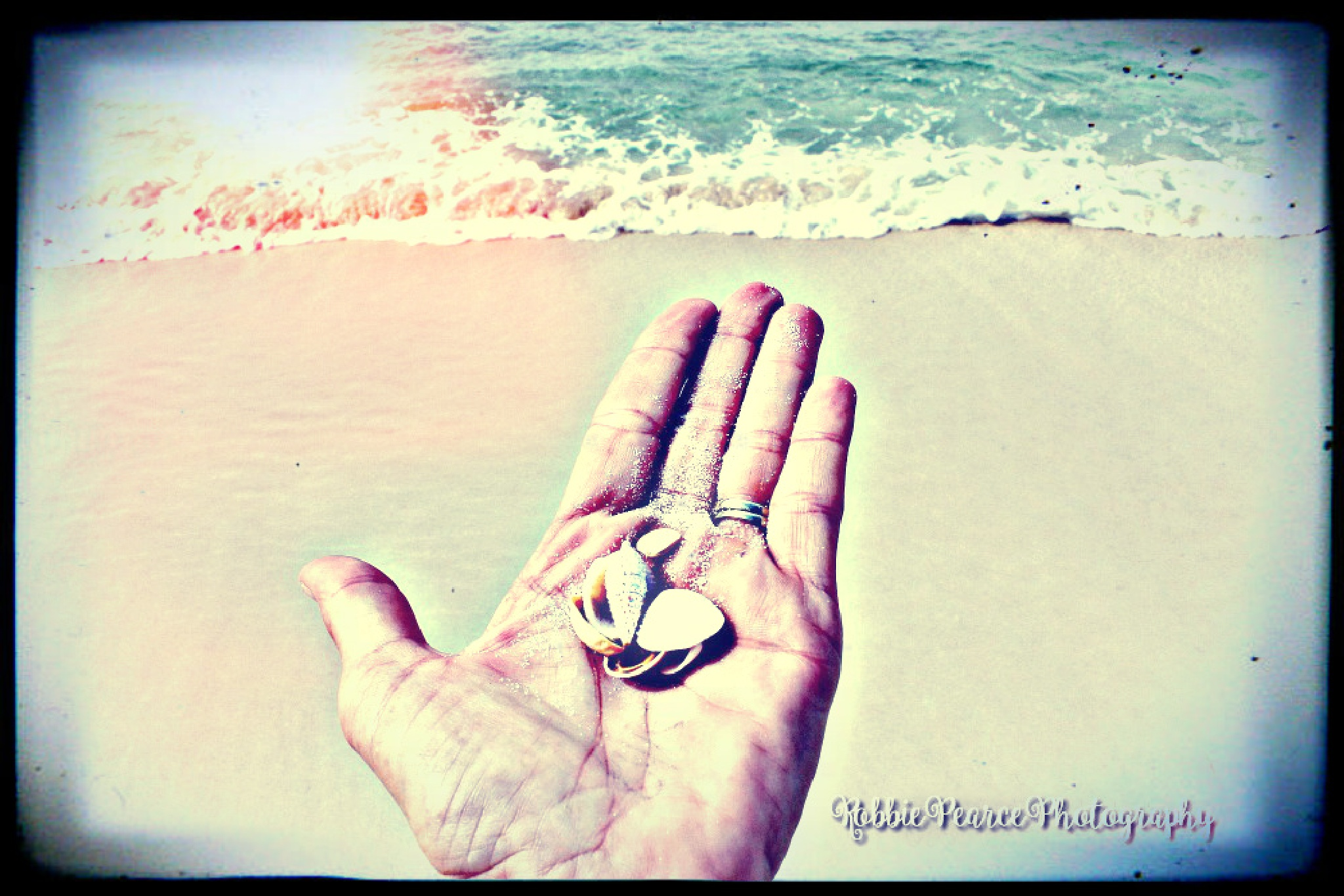 Shhh the ocean is calling the seashell.  by robbie.s.pearce