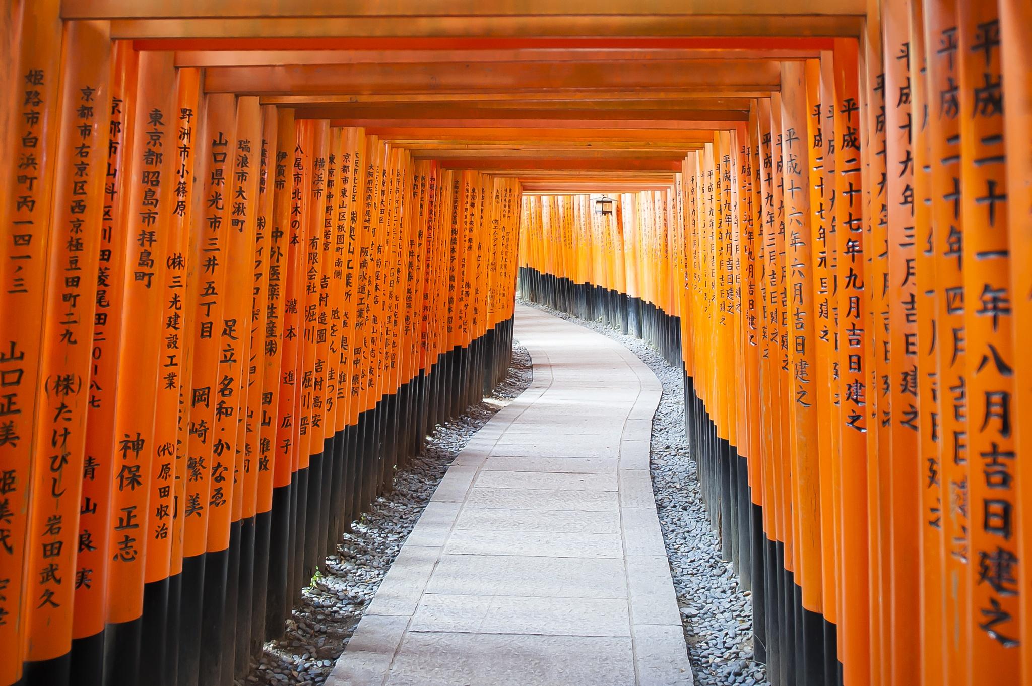 Fushimi Inari Shrine by alessandrogiovanelli