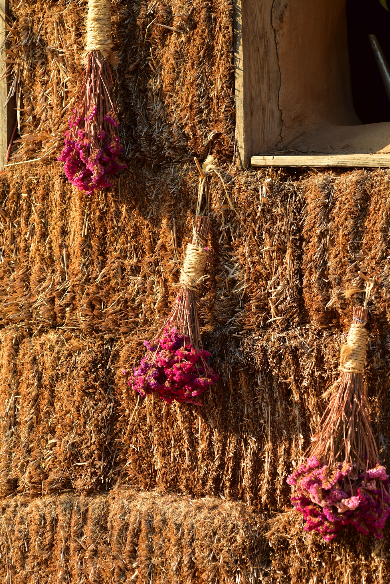 Upside Flower by fernandezoscar