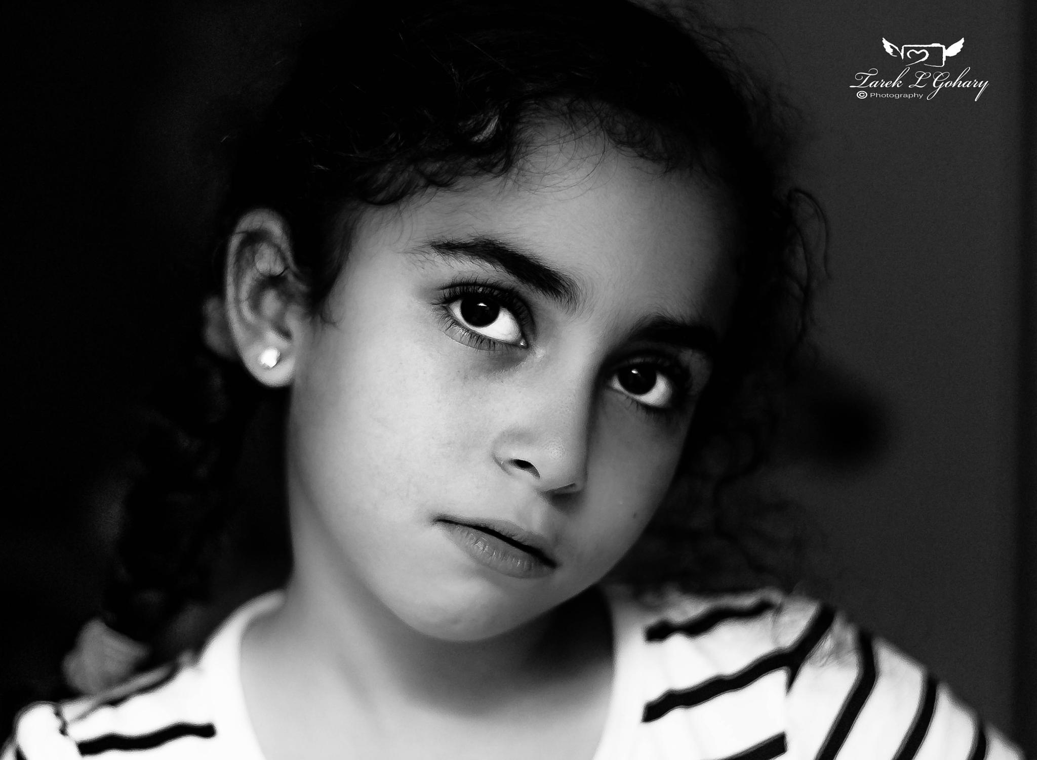 7 years of beauty  by Tarek L Gohary