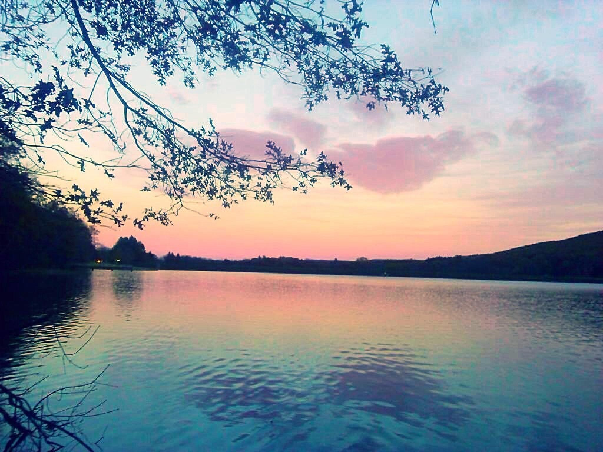Photo in Landscape #lake #view #nature