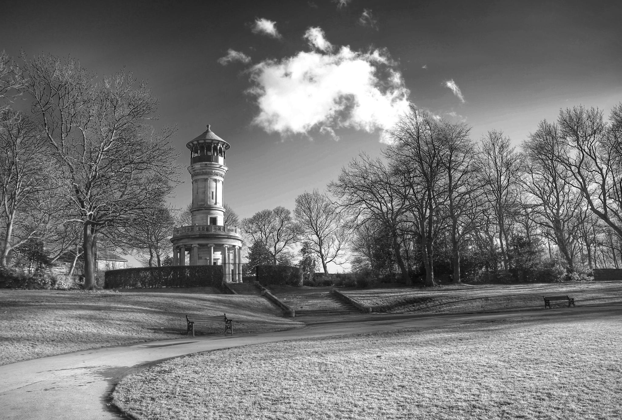 Locke Parke Tower III by Robert Carter