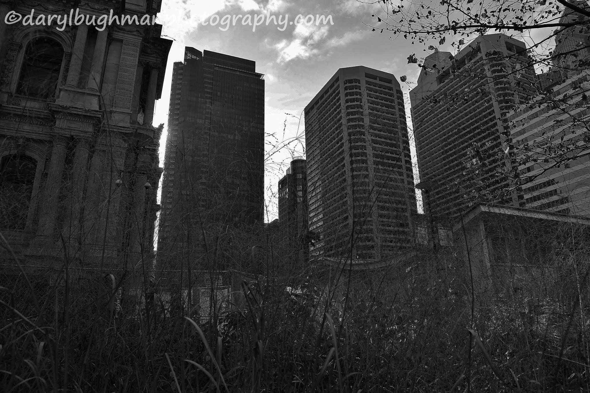 city by daryl.bughman