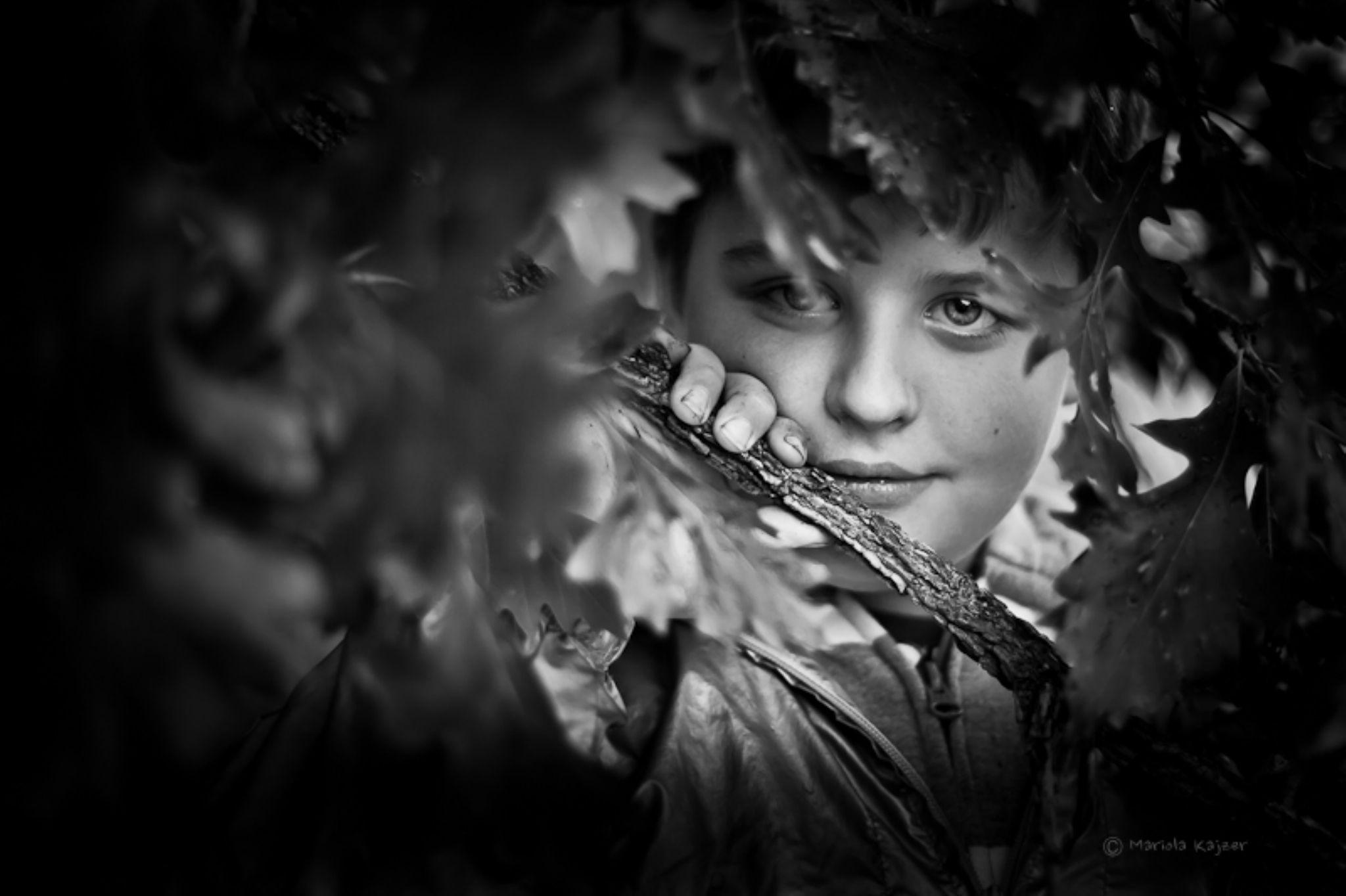 behind the tree by mariola.kajzer.1