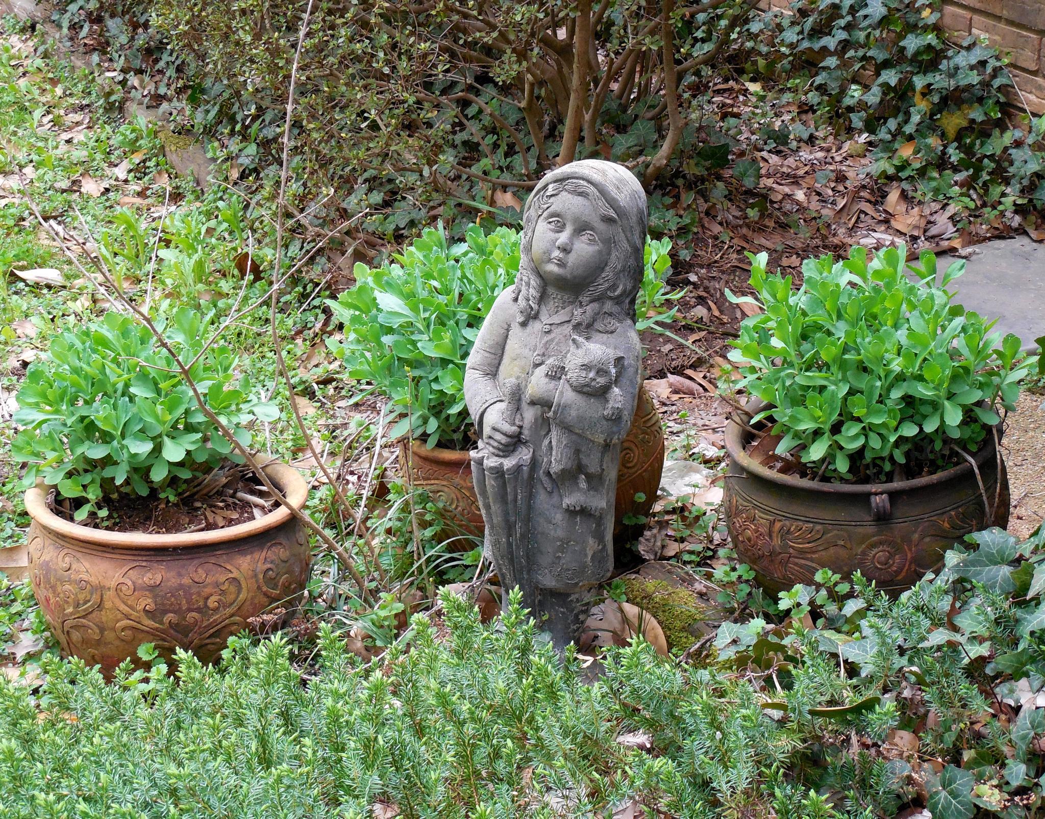 McGowan's garden by marcchia