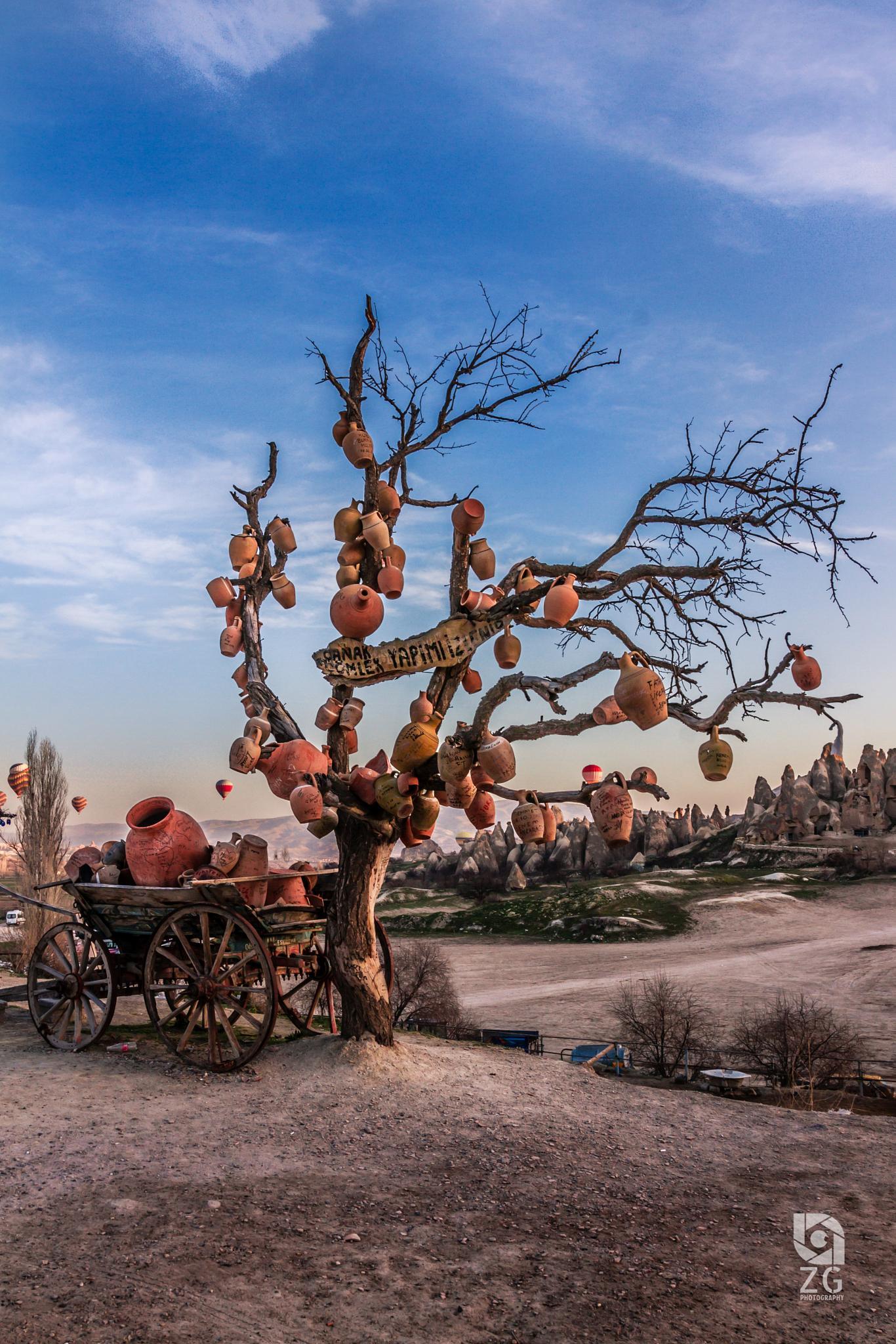 Wishes Tree by ZAK Gurbawi