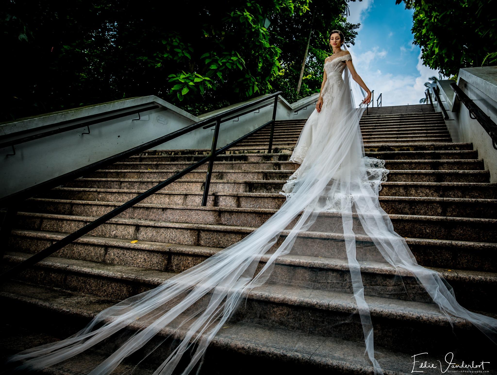 Bridal fantasies  by Silverfish & Friends