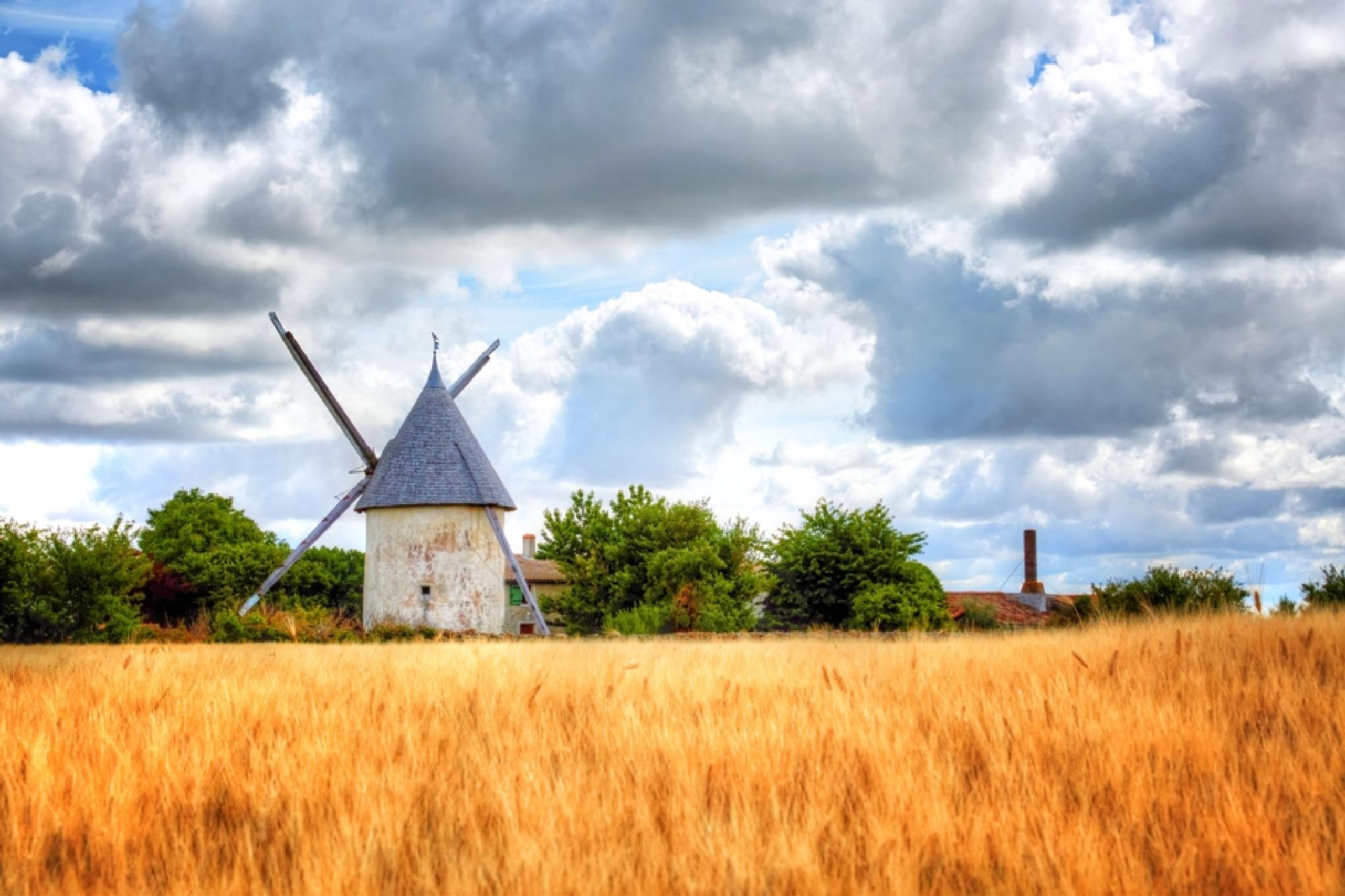 French windmill by Gary Martin